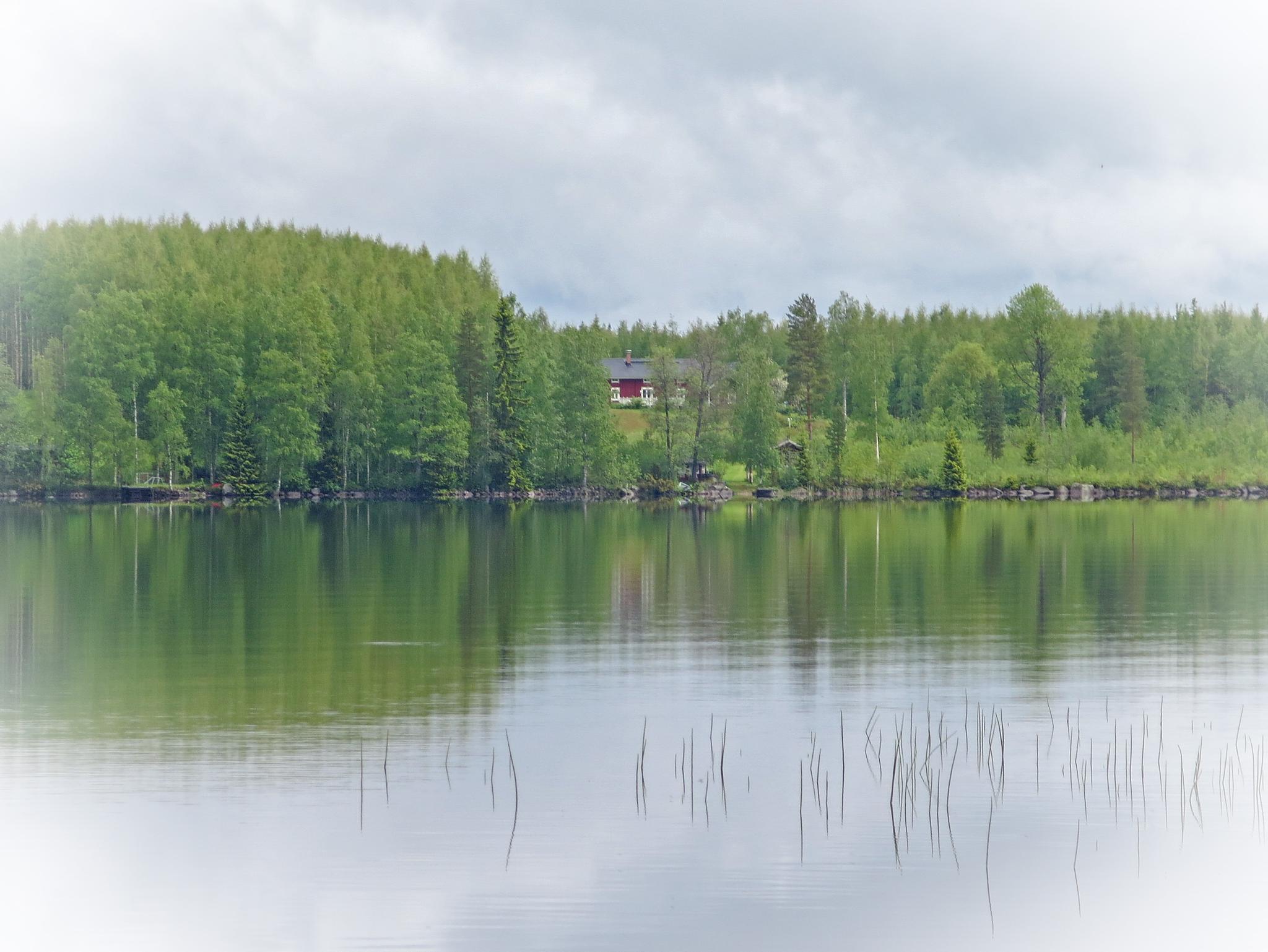 Healing view on Finnsh lake by evasojahannele