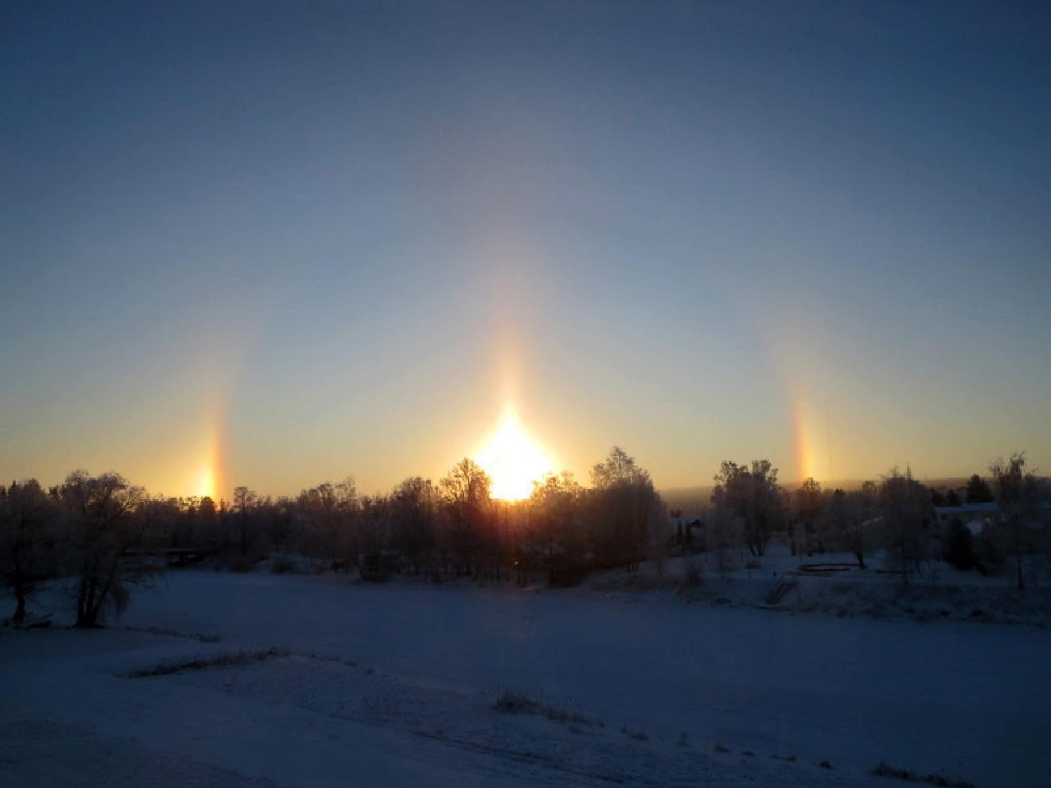 Halo phenomen in Finnish winter by evasojahannele