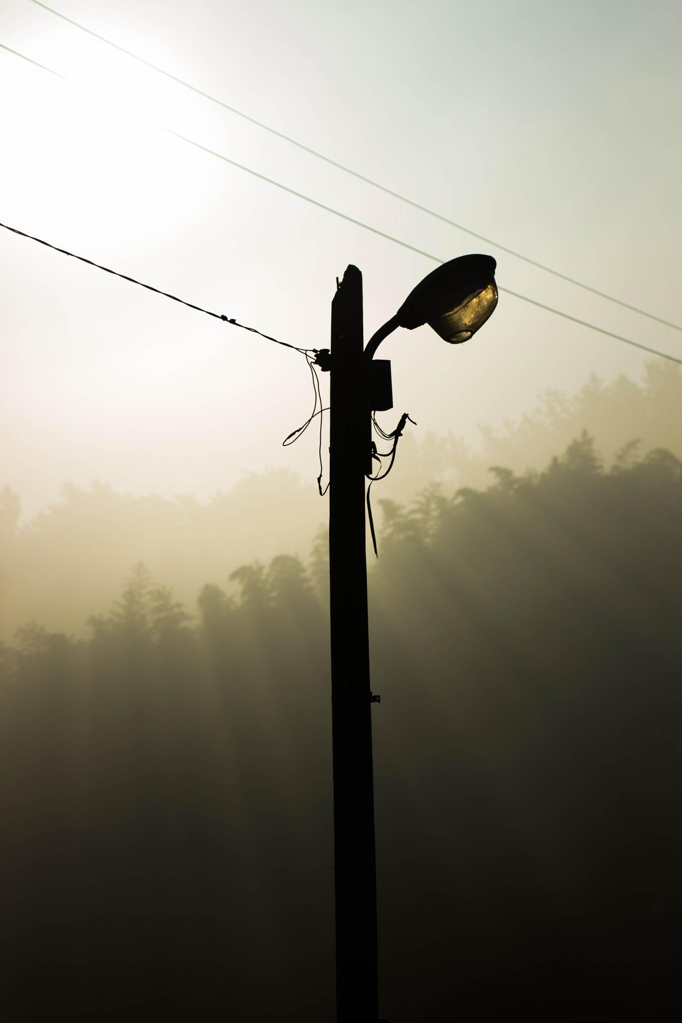 Streetlight off, Sunlight On by Muk