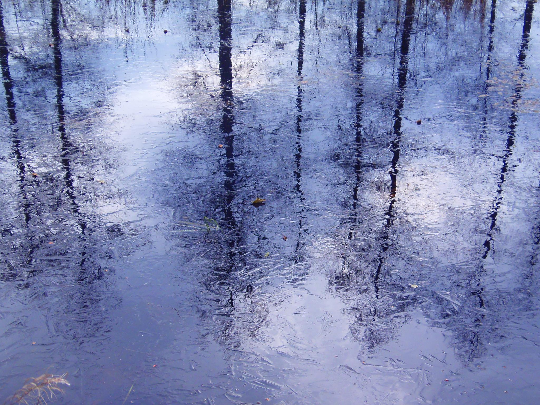 The cold - icy surface of the water - the reflection of the sky by laura.kamil
