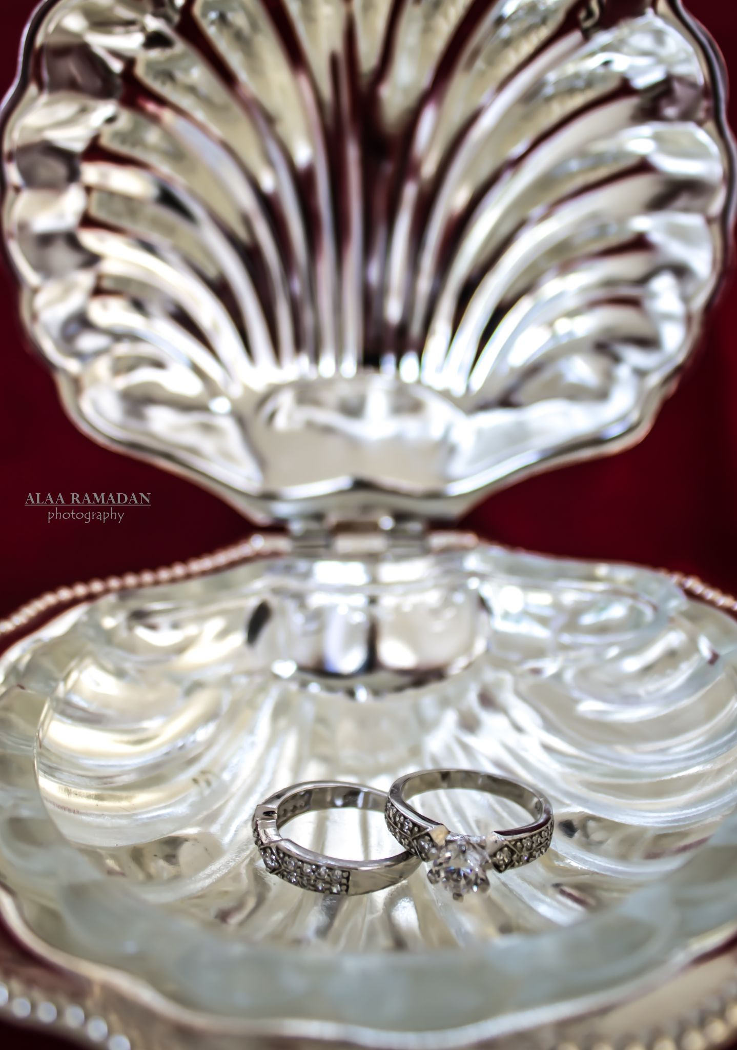 wedding rings  by Alaa Ramadan
