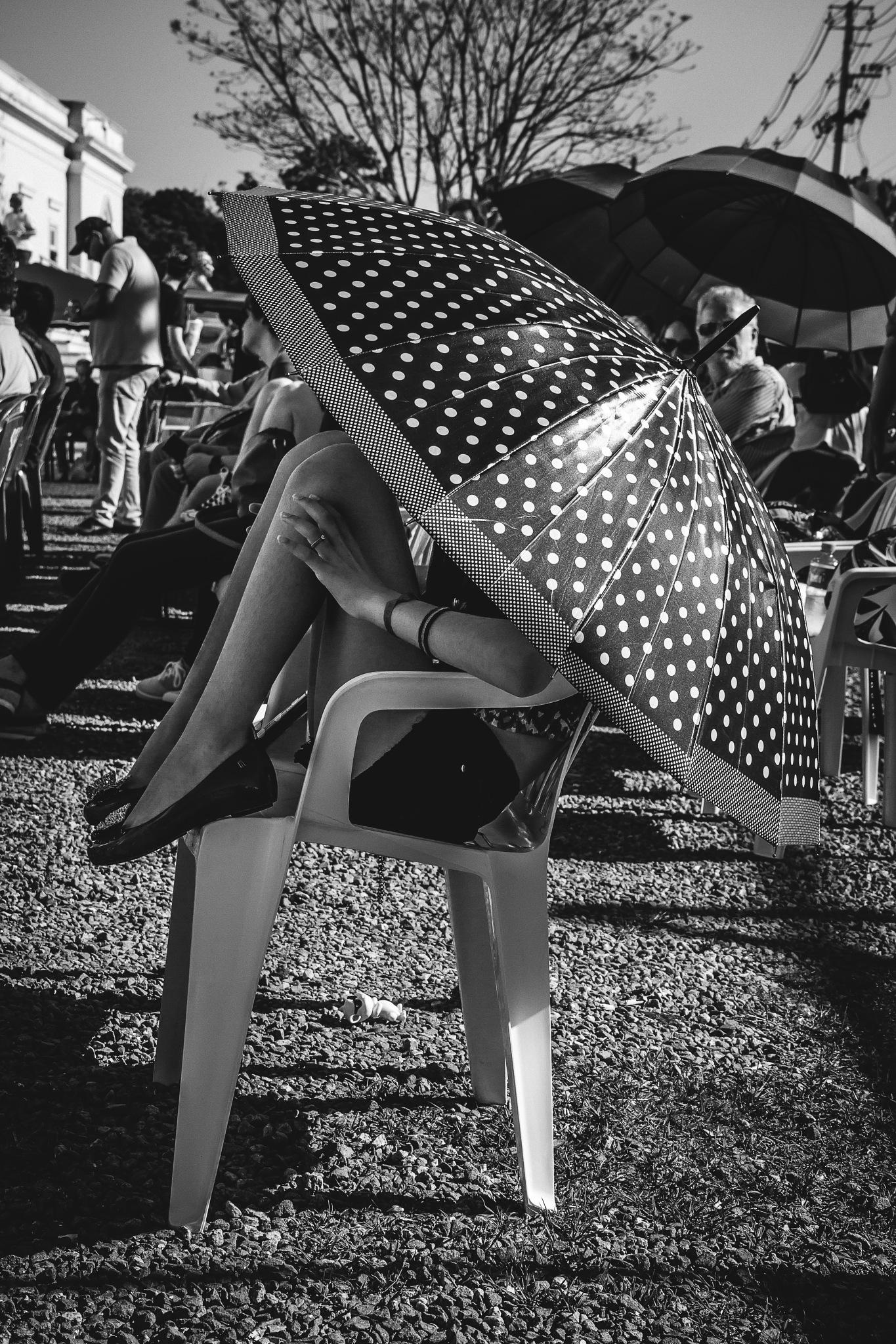 Tarde de Sol by Pedro Antônio Heinrich