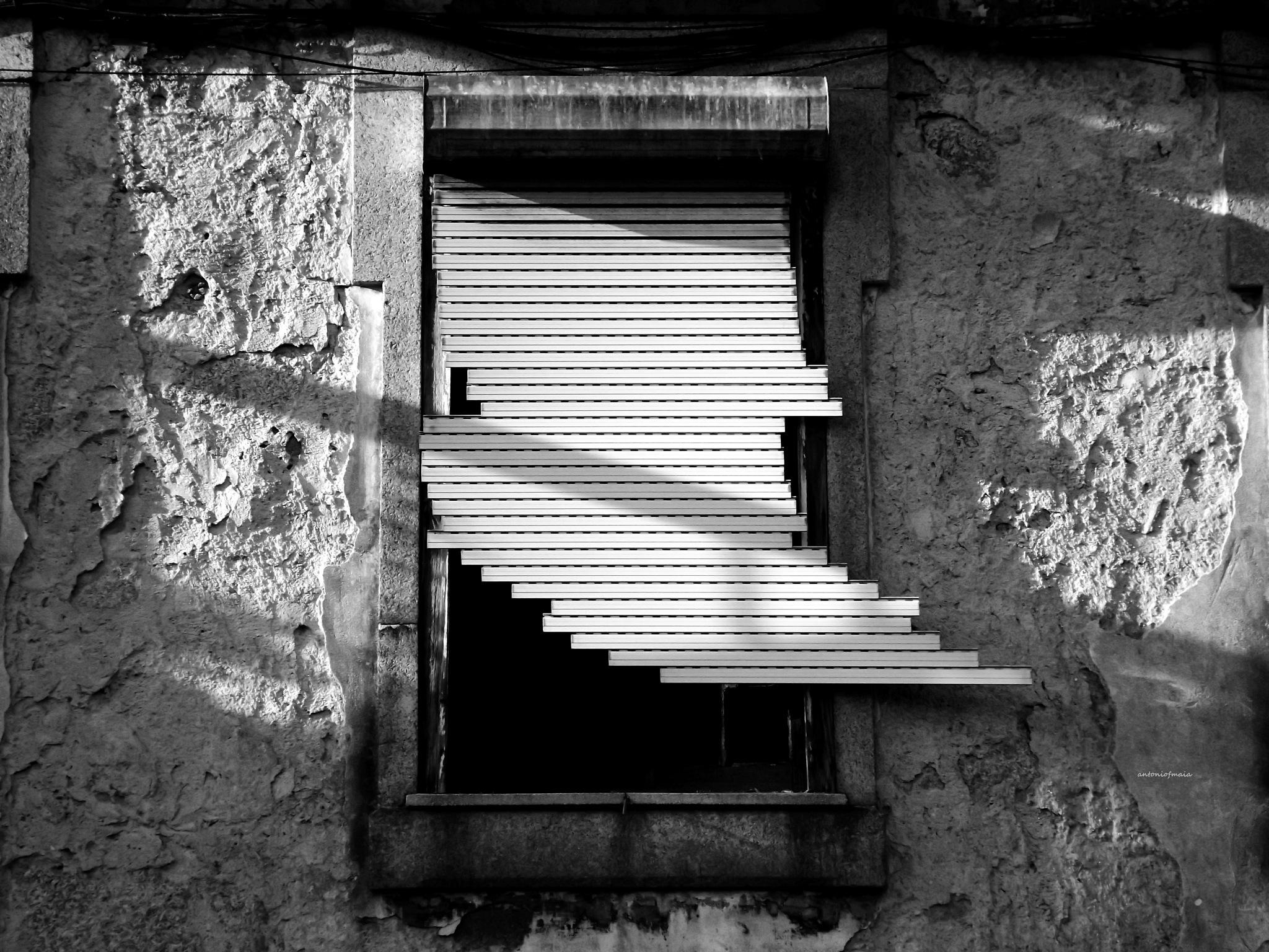 Lost memories... by Antonio F. Maia