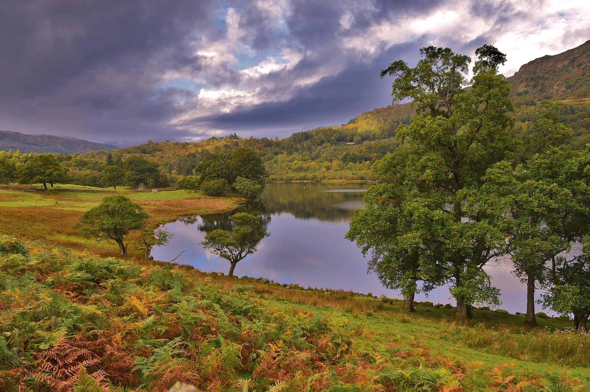 Rydal Water 2 by Steve Wilkinson
