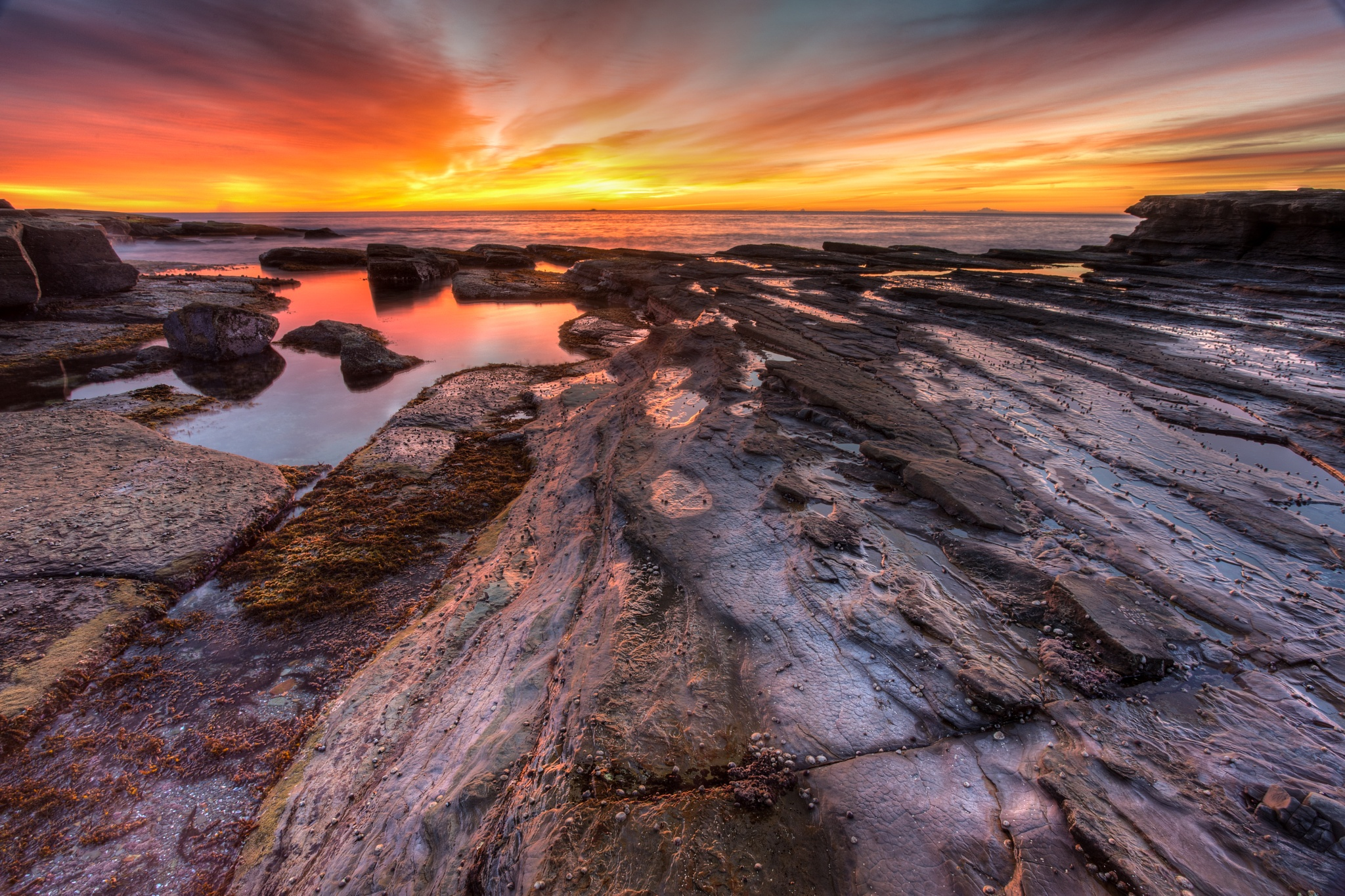 Terrigal Sunrise by neil1966