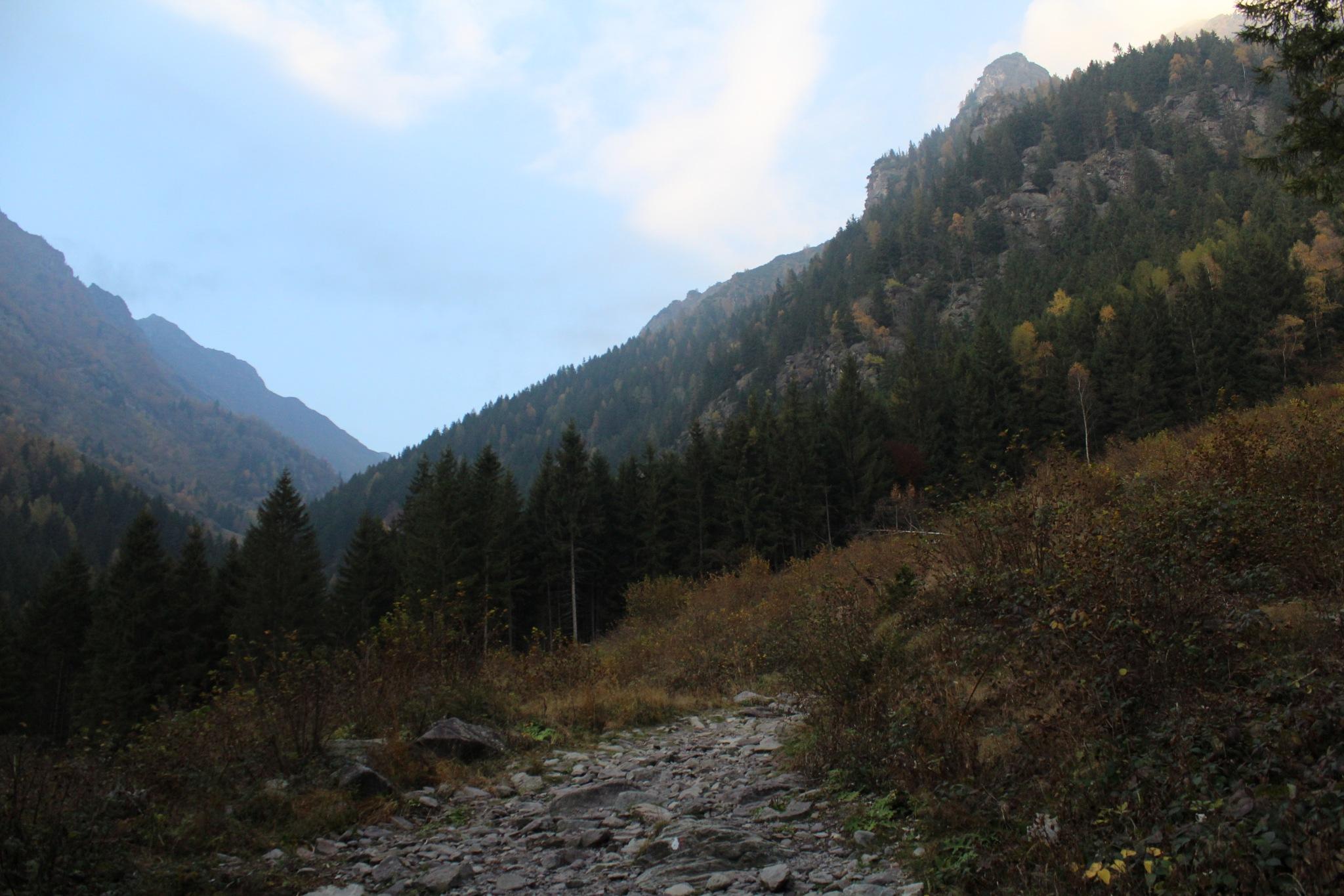 Valle del Vò, Schilpario BG by saraorler