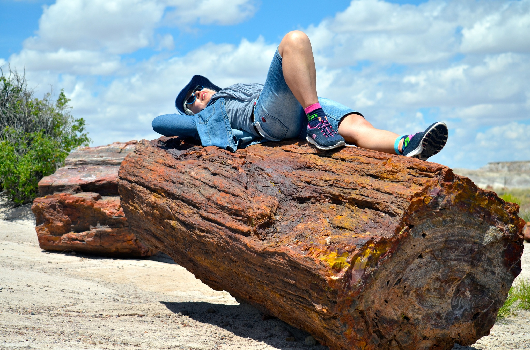Resting on petrified wood by Lana-photo-Art