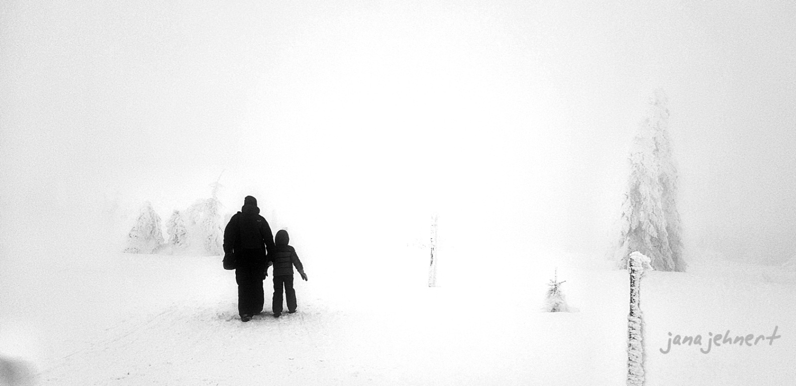 Photo in Black and White #nature fog snow  landscape