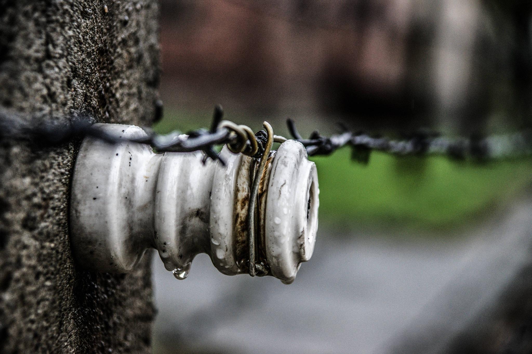 Auschwitz, April 2017 by Gianni Meini