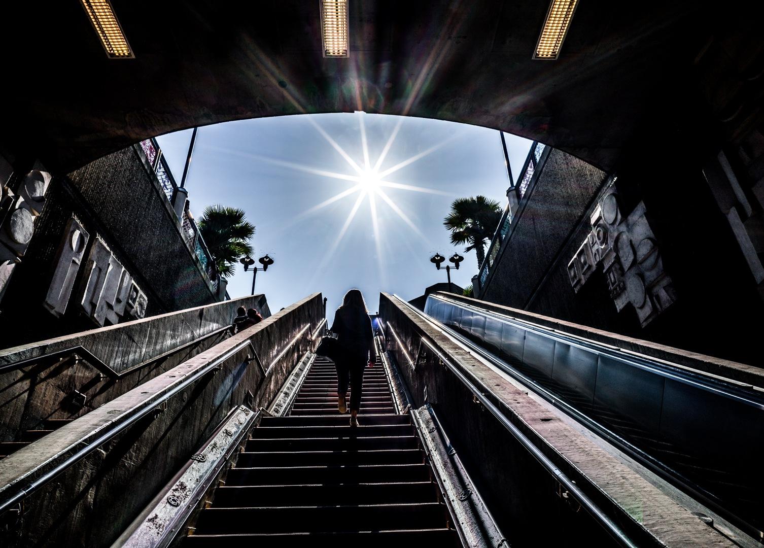 Life / SF 1386 by HowardL