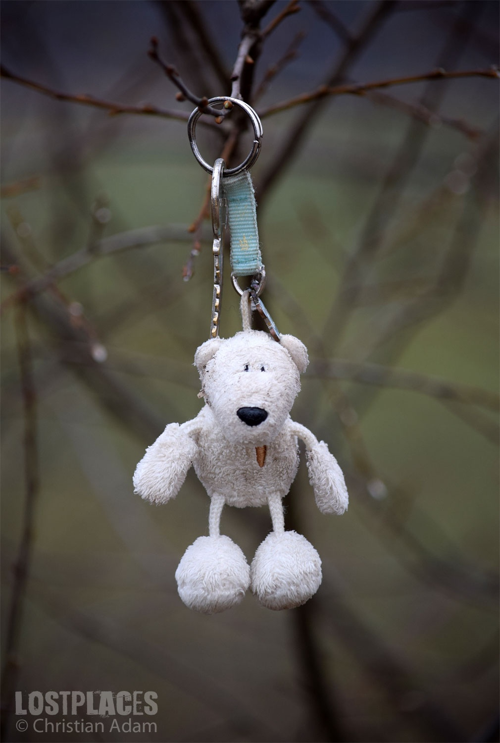 Photo in Random #teddy #lostplace