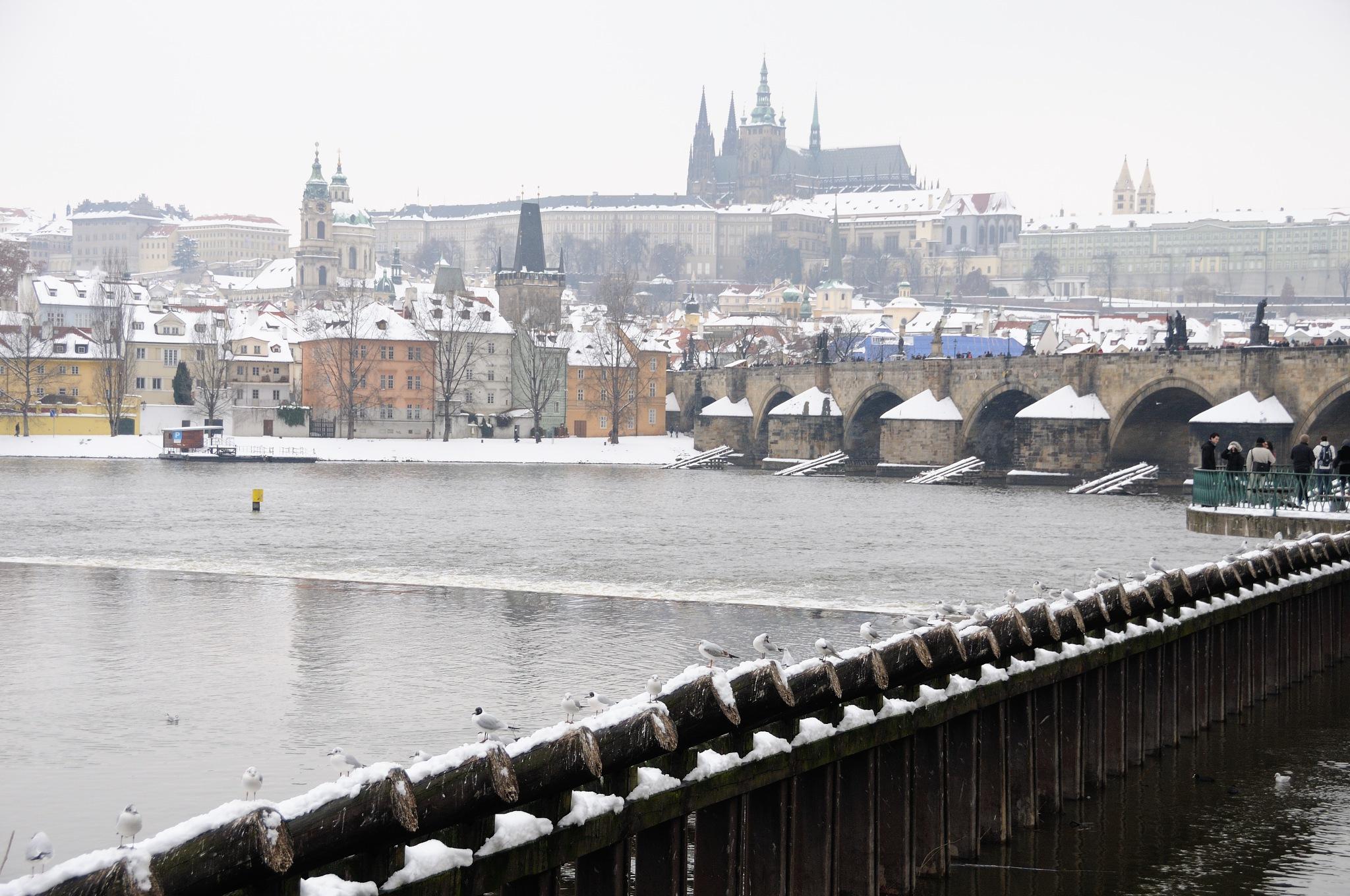 Prague in winter I by Zdenek Krchak