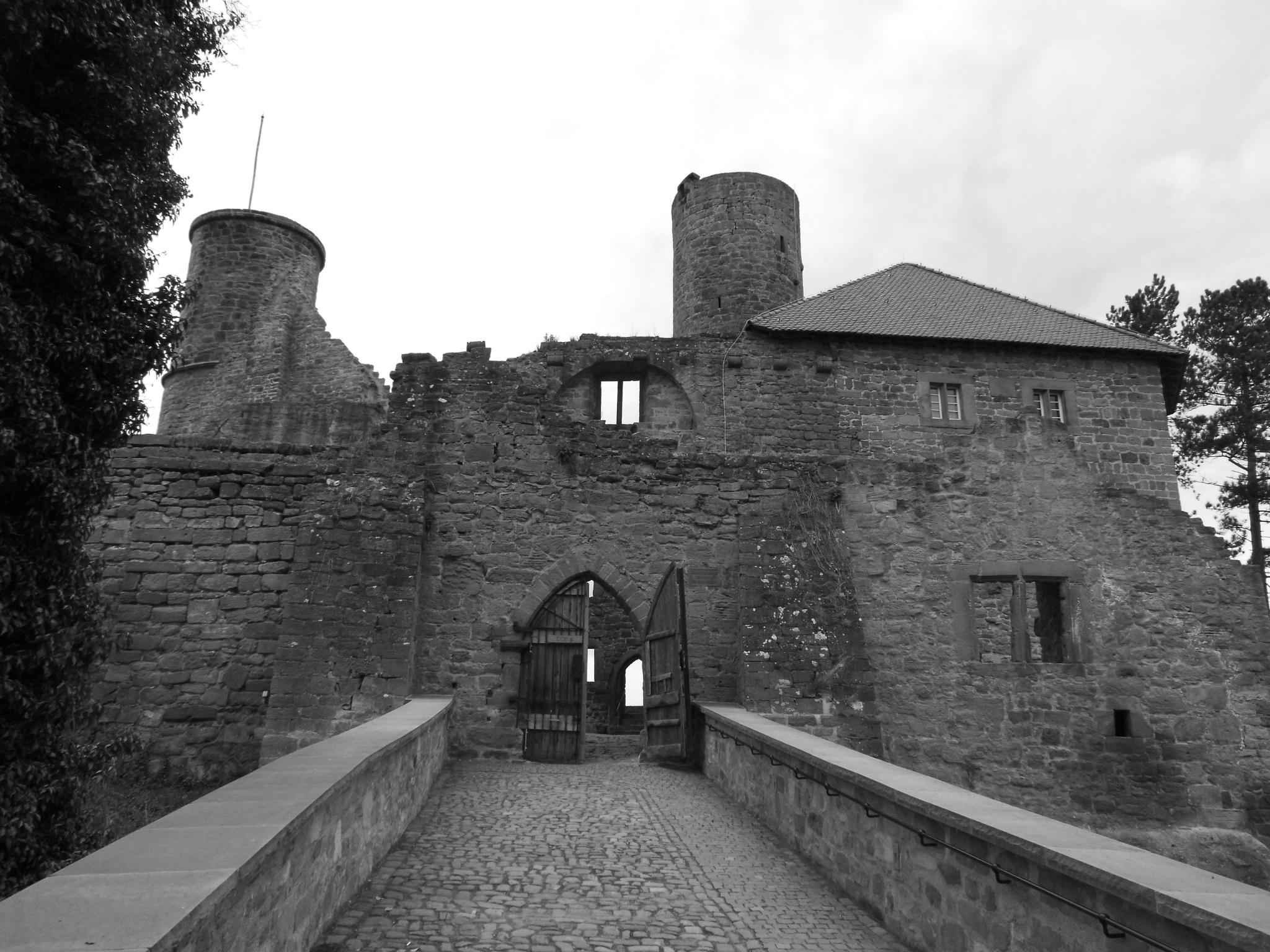 Burg Hanstein (2) by Sigi Jedamski