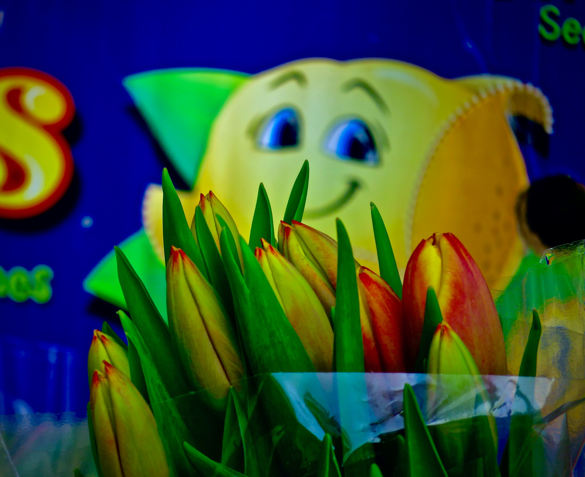 as thoughts n colours turn to early spring  by David Devion
