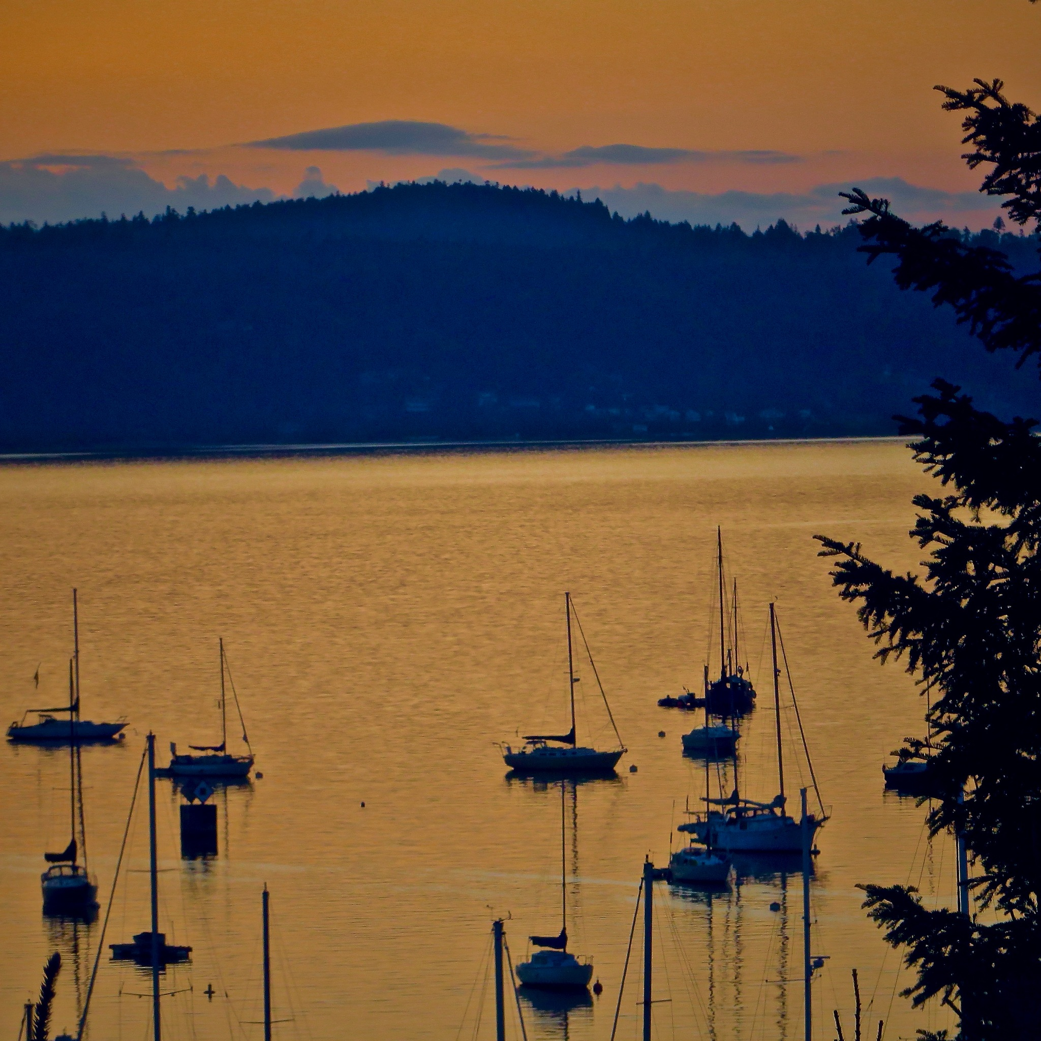 as the boats float over the bay at the end of another day by David Devion