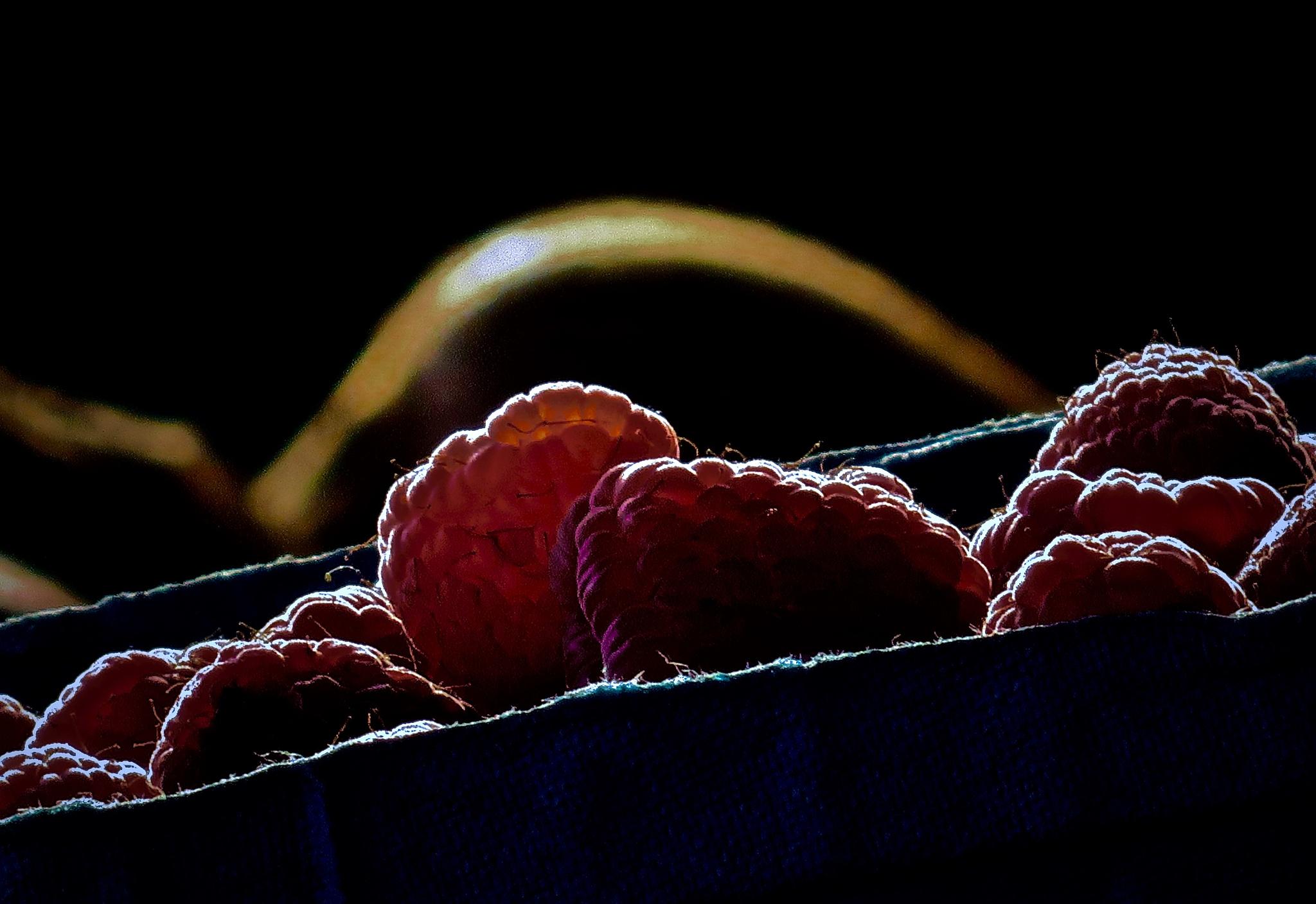 Photo in Food #fruit
