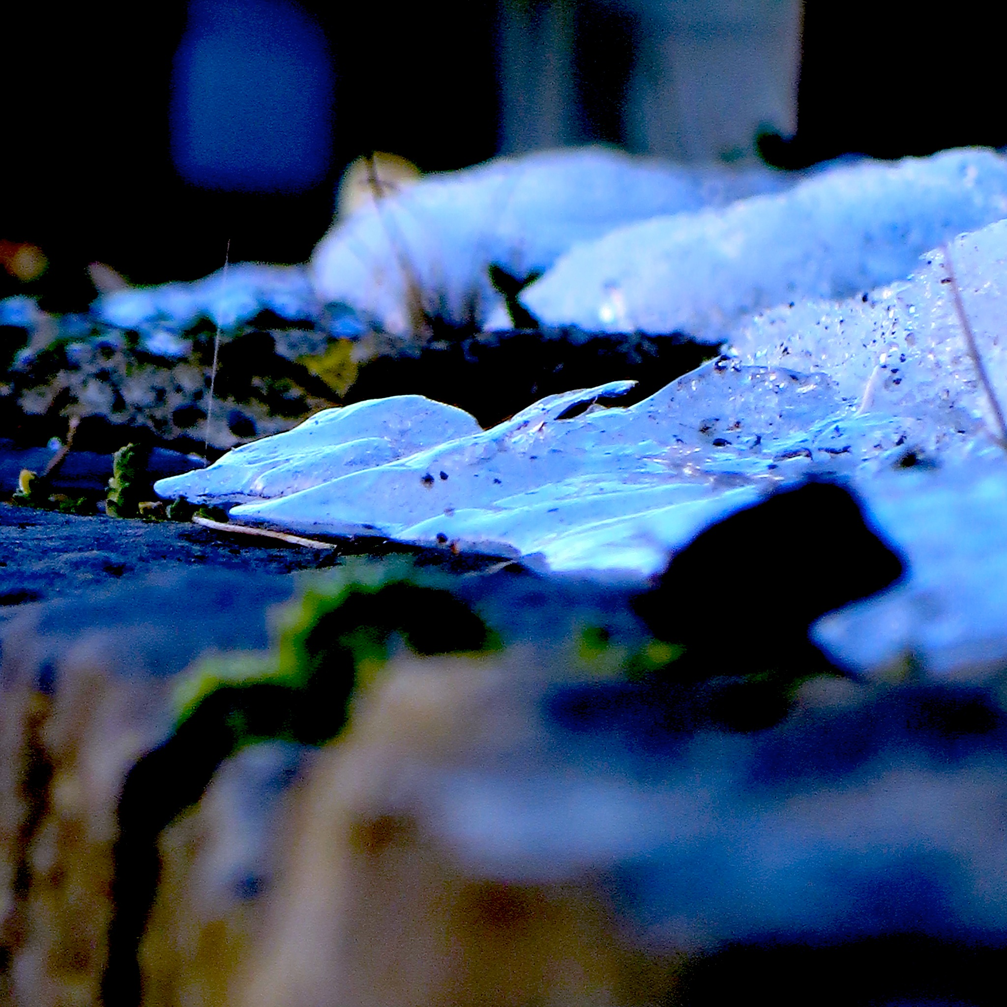 as winter just hangs around n around givin ya the blues .... :S by David Devion