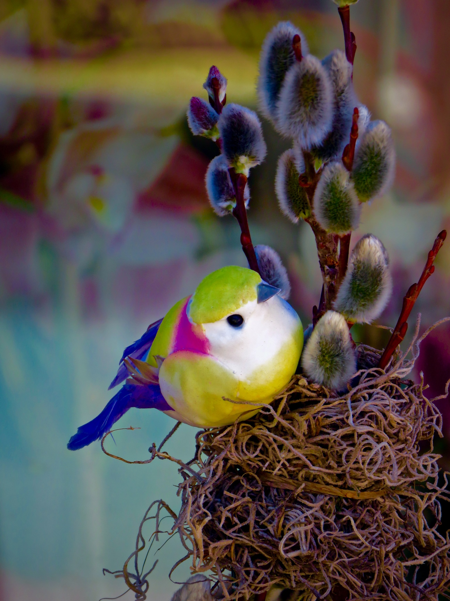 the bird of peace in a world global situation that sorta reeks huh !! ... : S by David Devion