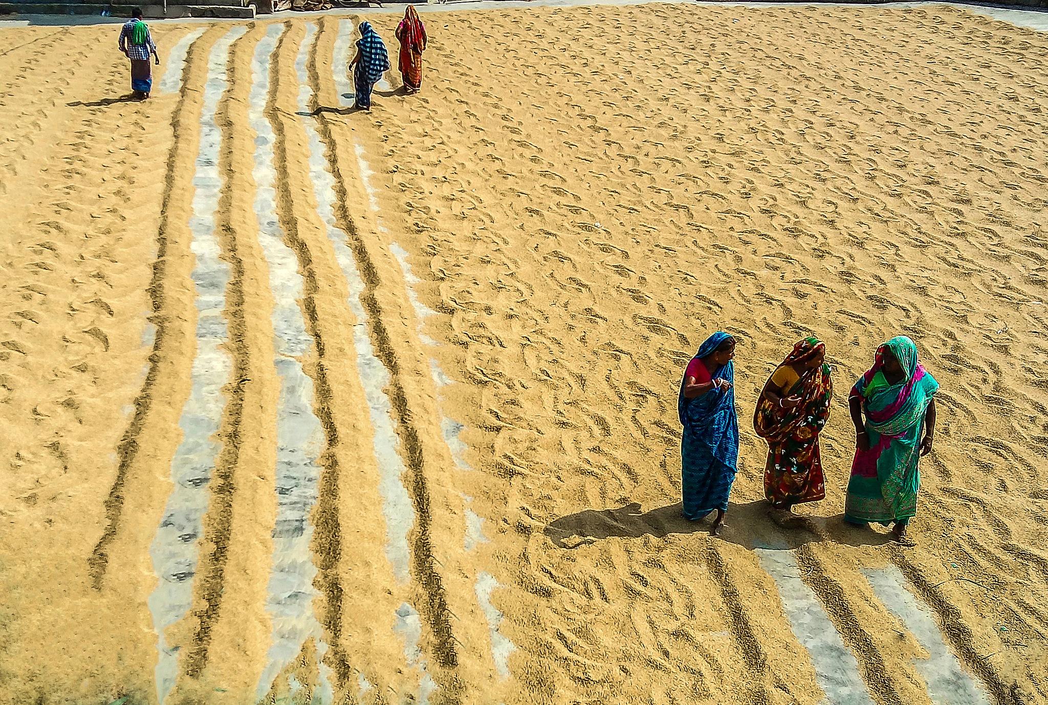 Women empowerment by Ehsanul Siddiq Aranya