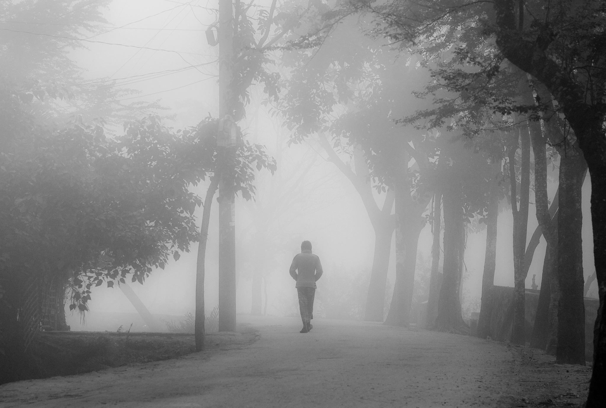To the haze by Ehsanul Siddiq Aranya