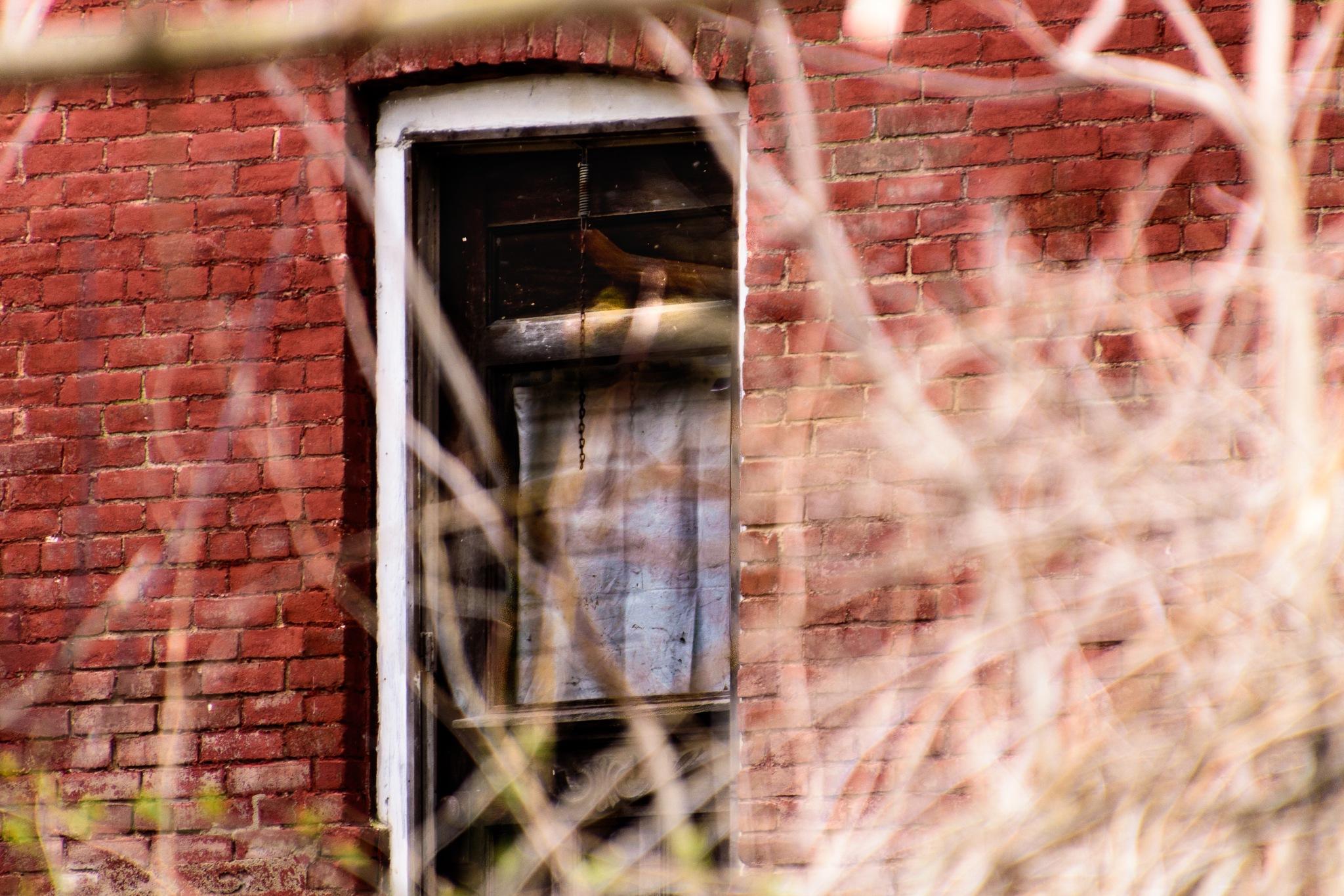 Dark Door by Gruca_joe