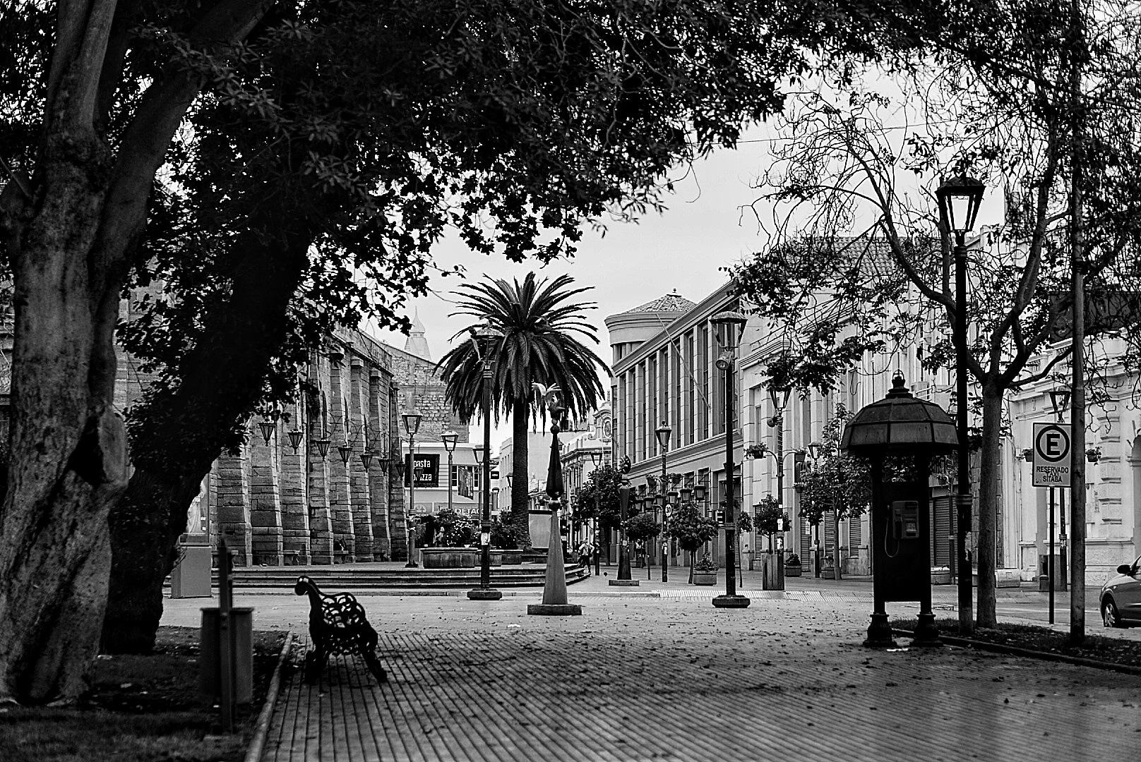 Otoño en La Serena by Marcelo Lorca