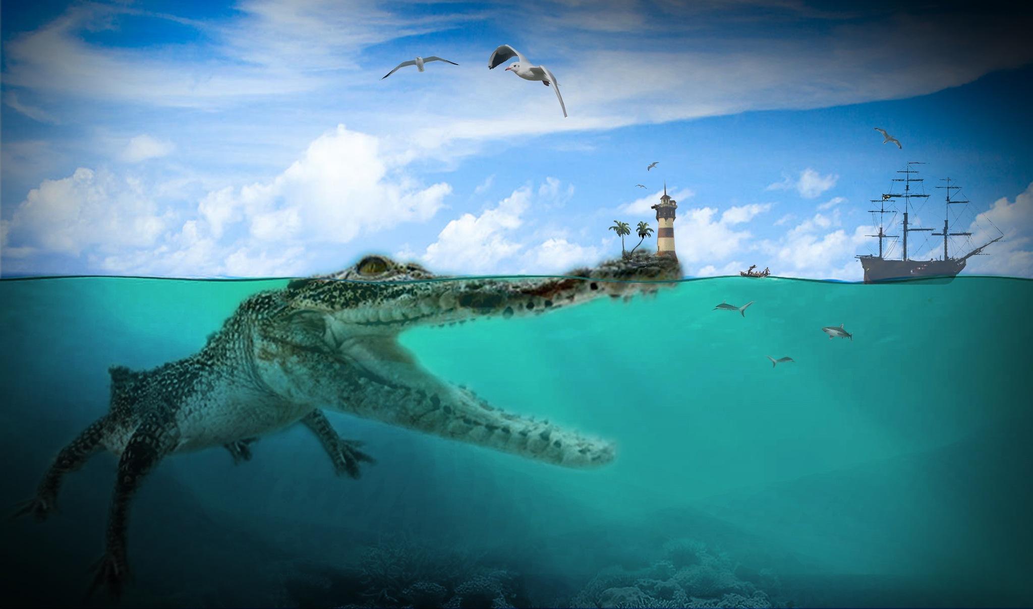 Escape from Kroko Island  by qlpixxfotoart
