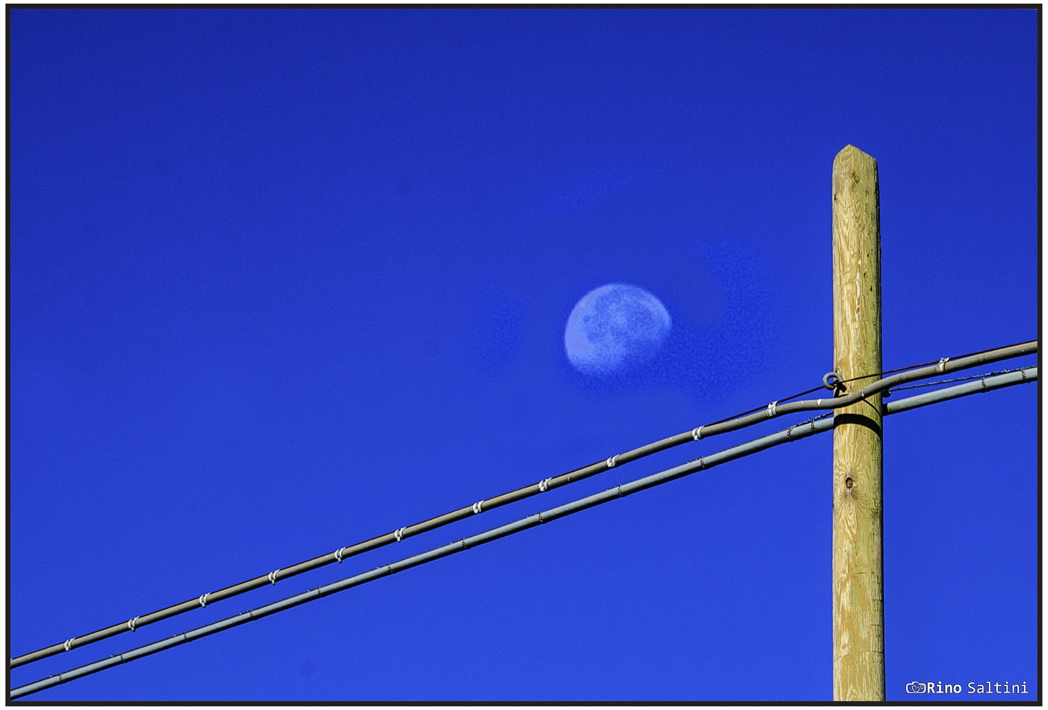luna by Rino Saltini