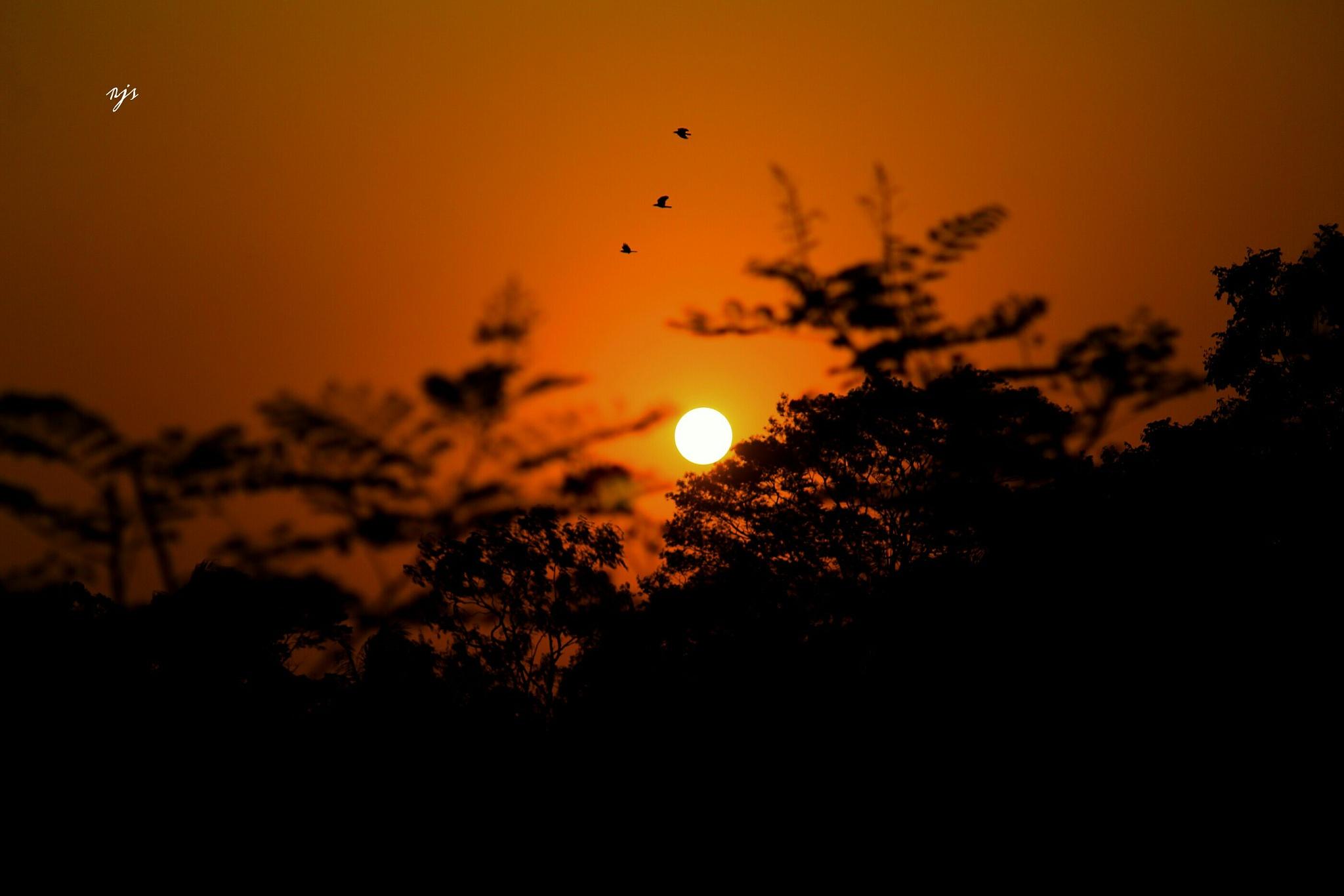 #sun by rjsraboni2013
