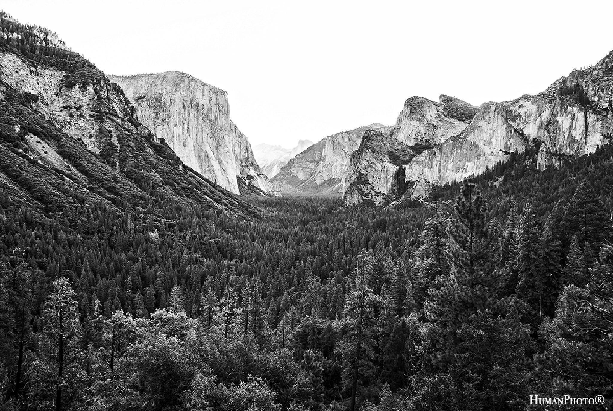 Yosemite Park by HumanPhoto