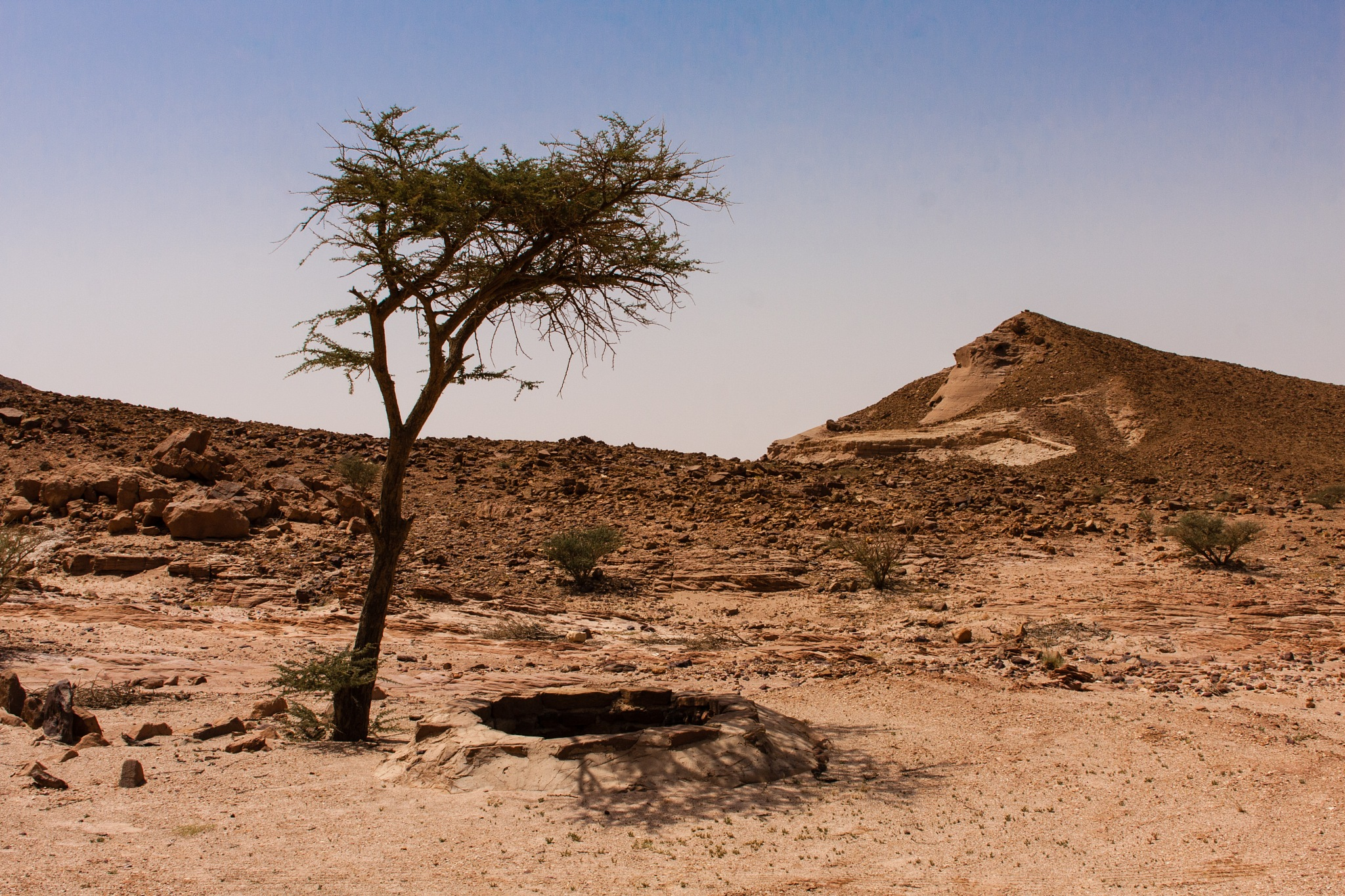 A Desert Well by Volodymyr Dvornyk