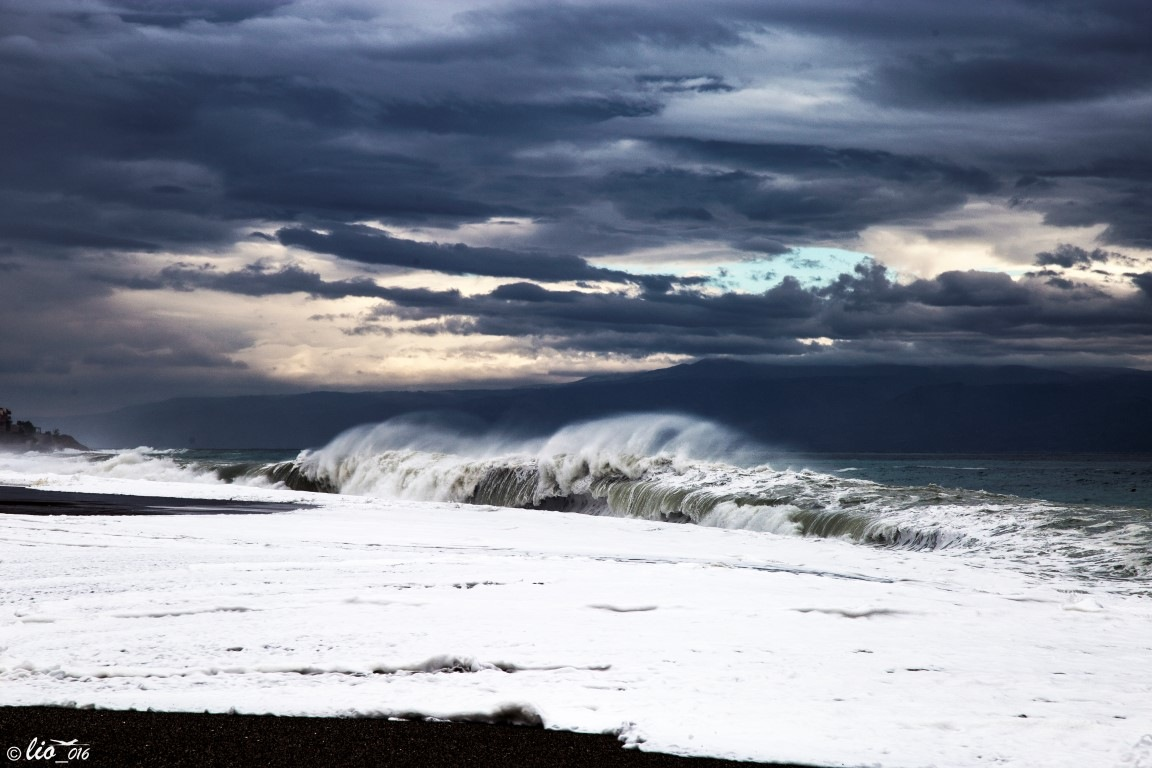 Winter Waves by Lillo Flamingo Beach