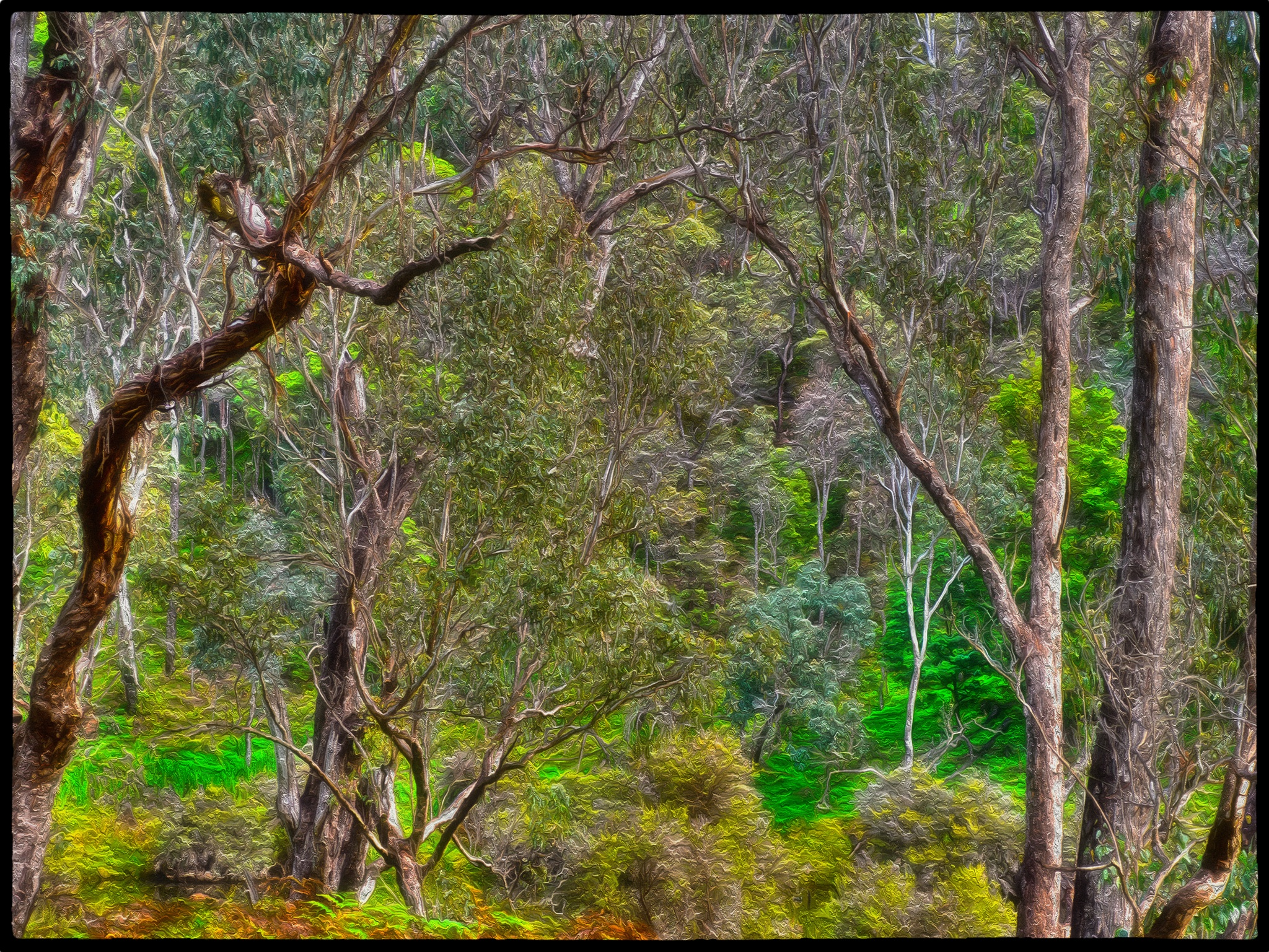 Down in the gully by LyndaRealmshift