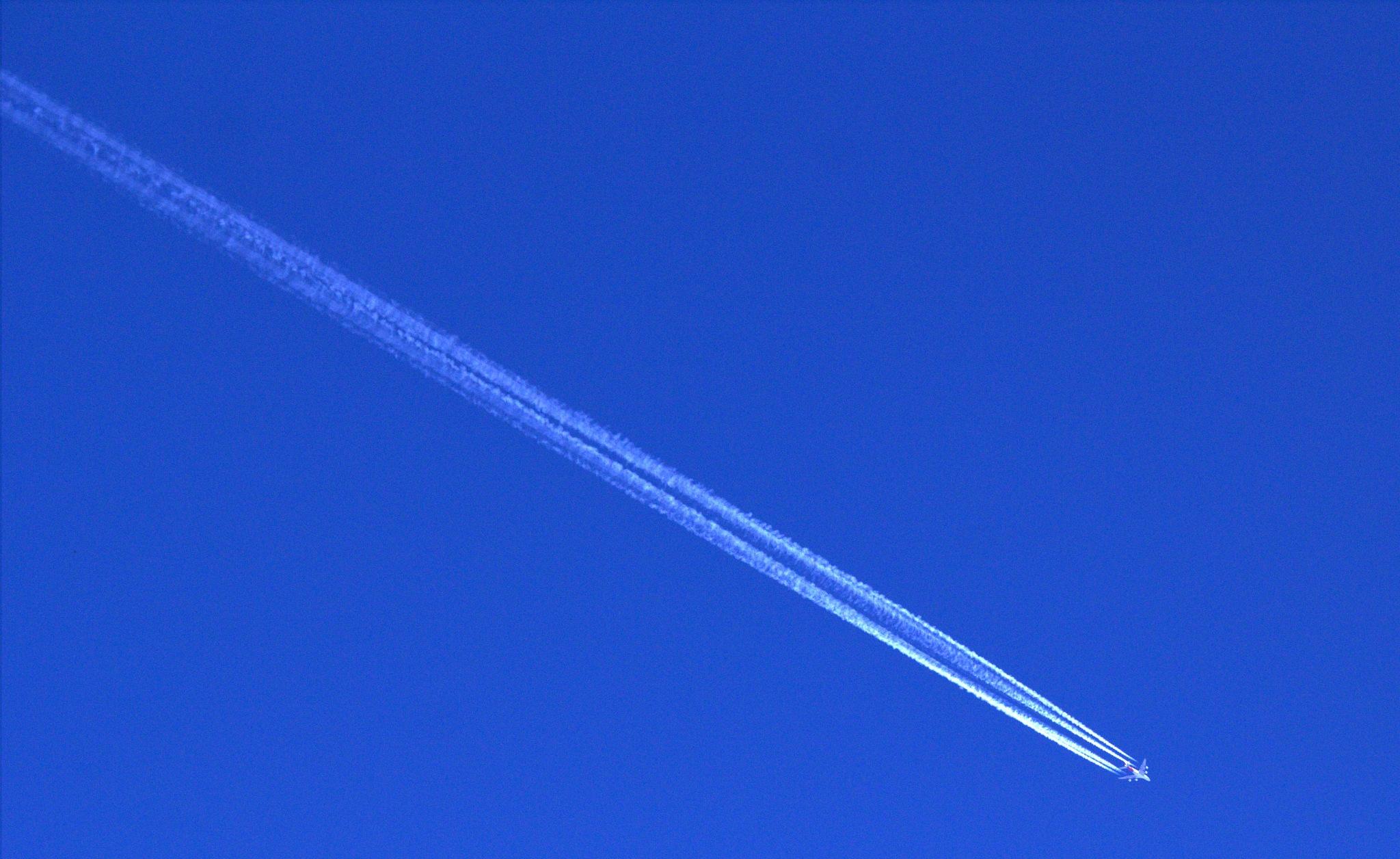 Fly bye by LyndaRealmshift