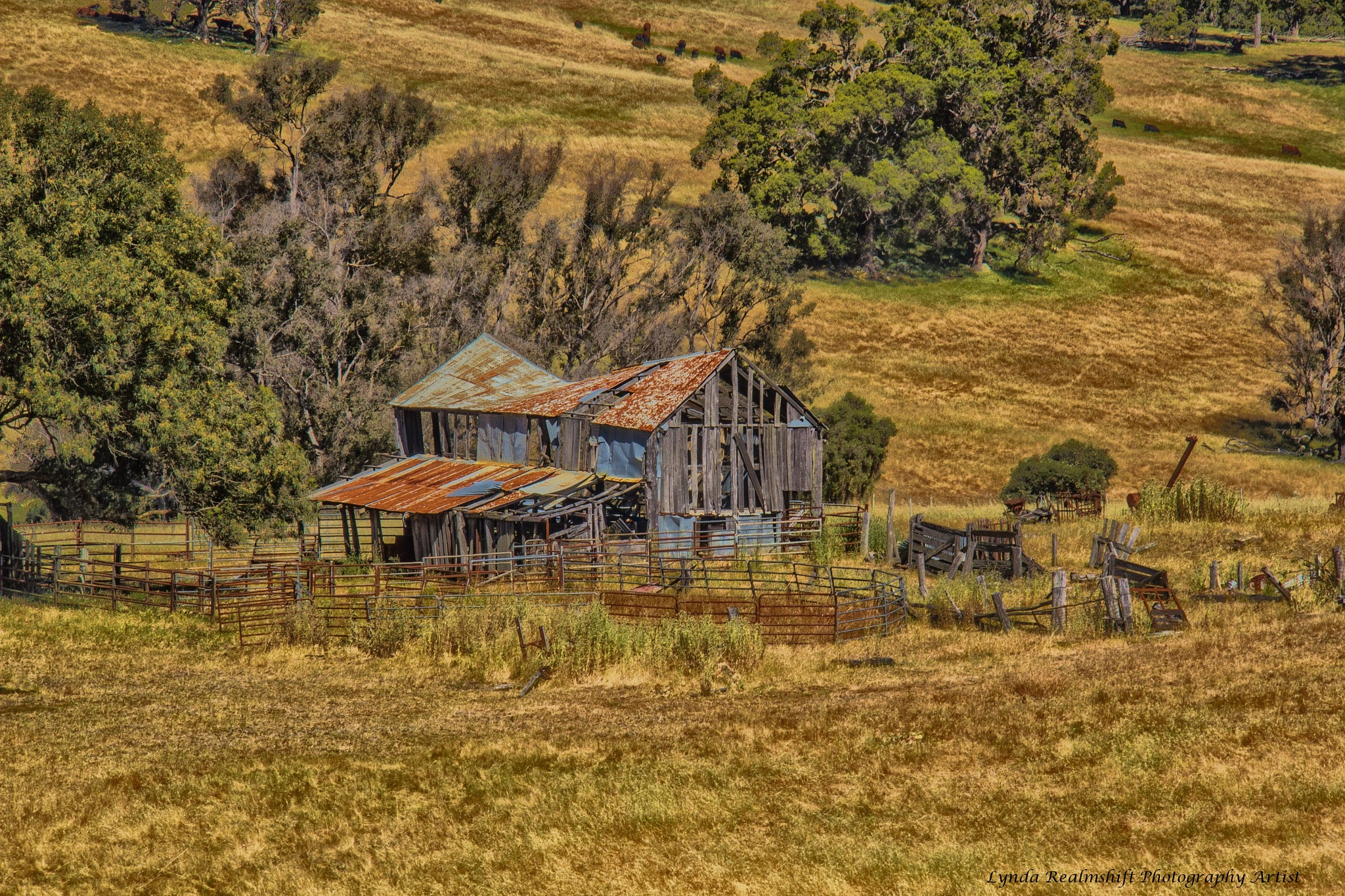 Old Shearing Shed & holding Pens by LyndaRealmshift