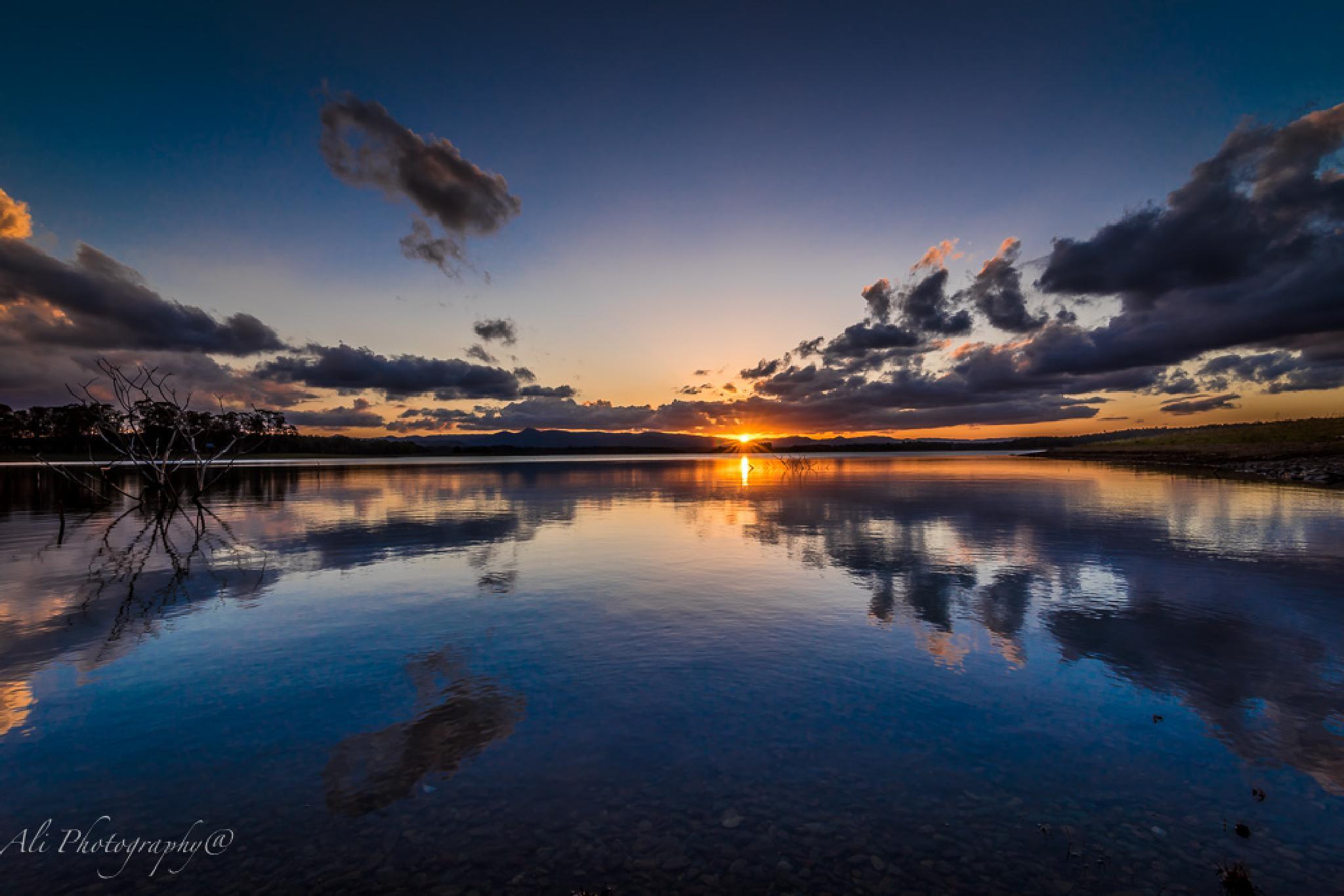 lake Samsonvale Sunset by Ali Saadat