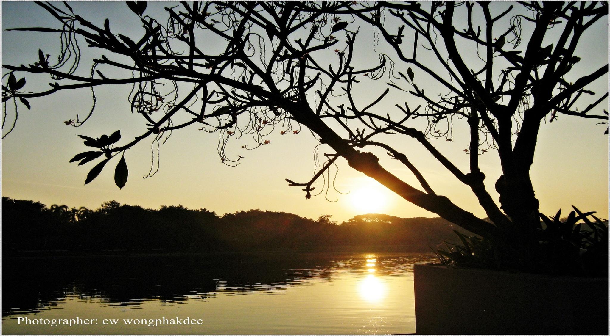 Sunrise Change of seasons by Wongphakdee