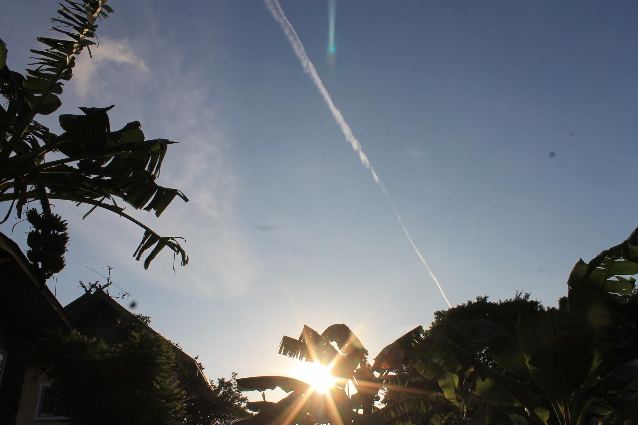 Sunrise by Wongphakdee