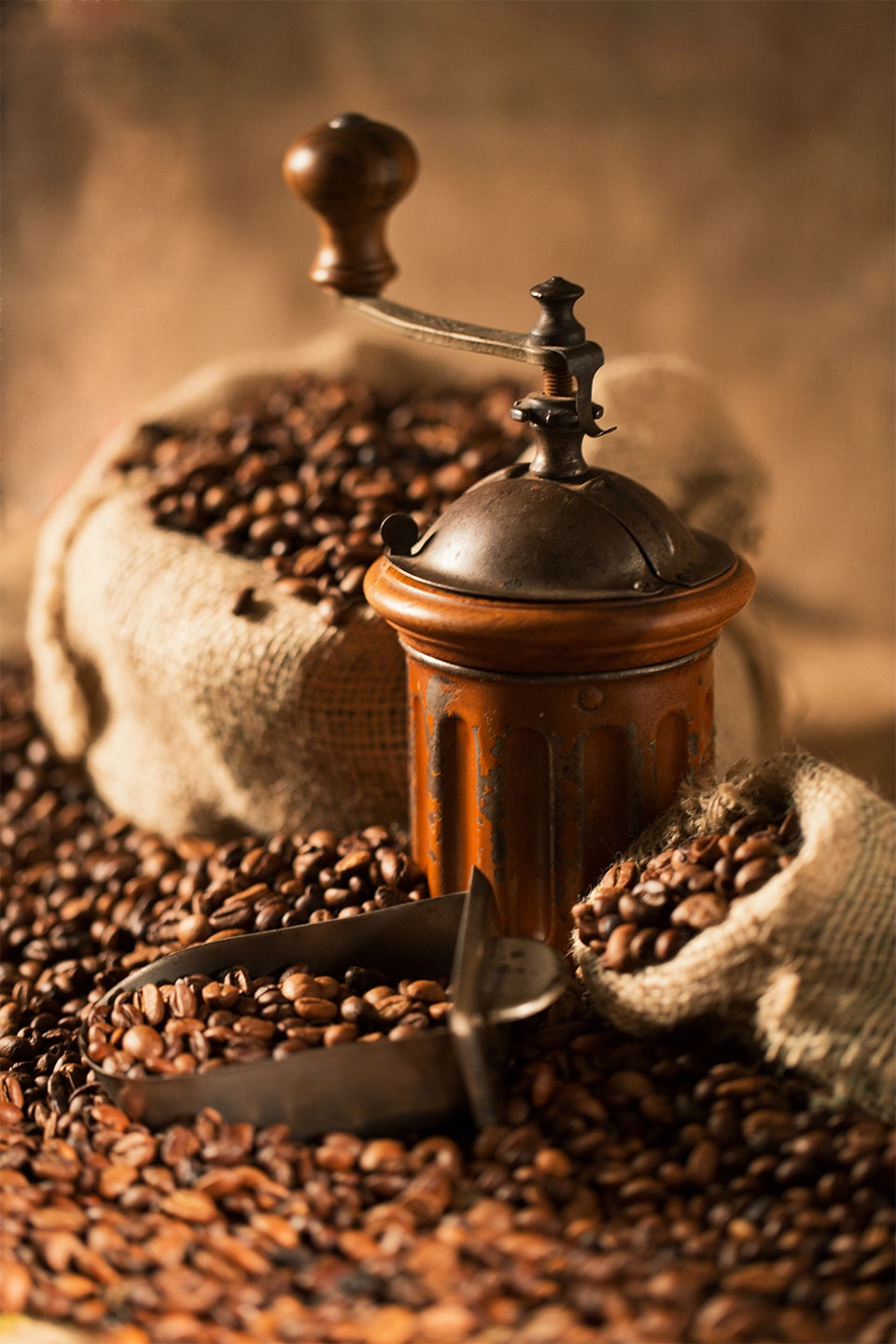 Coffe beans with old grinder by Marco Soscia