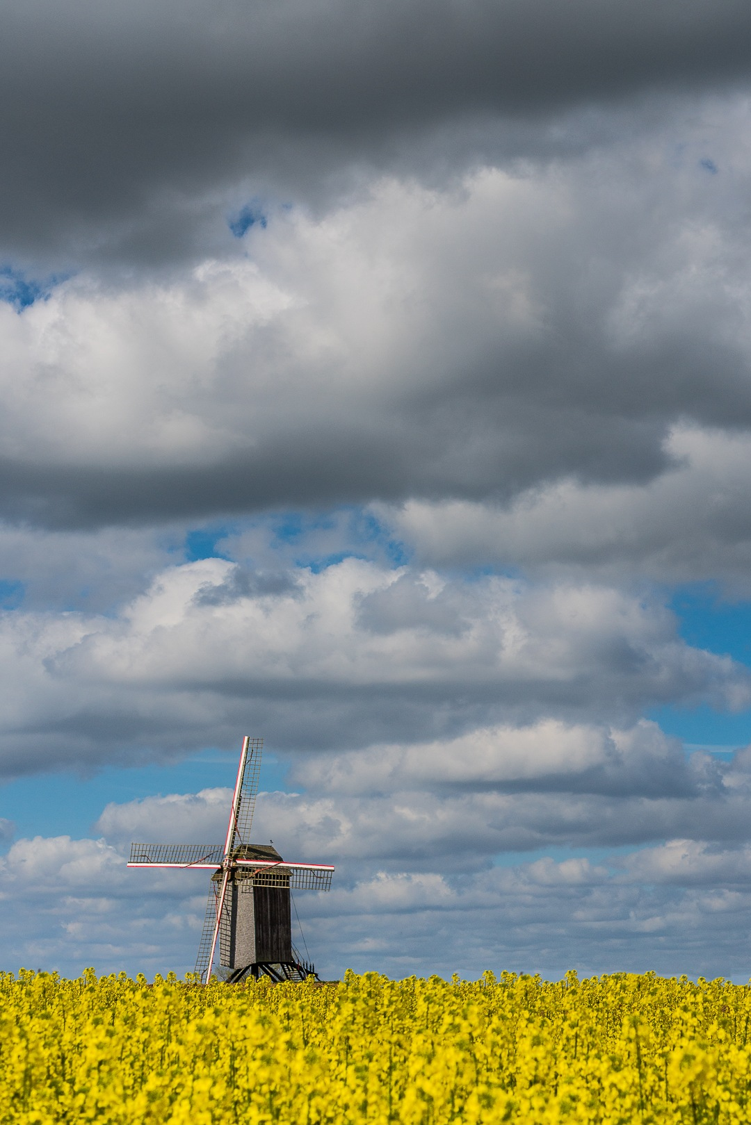 mill  by Els Blomme