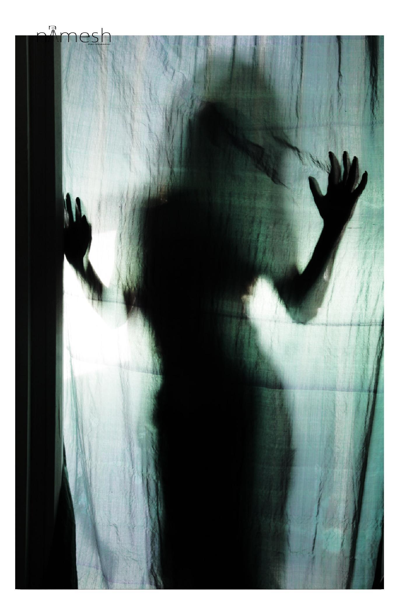 Shadow Have Colors by Nimesh Kumar