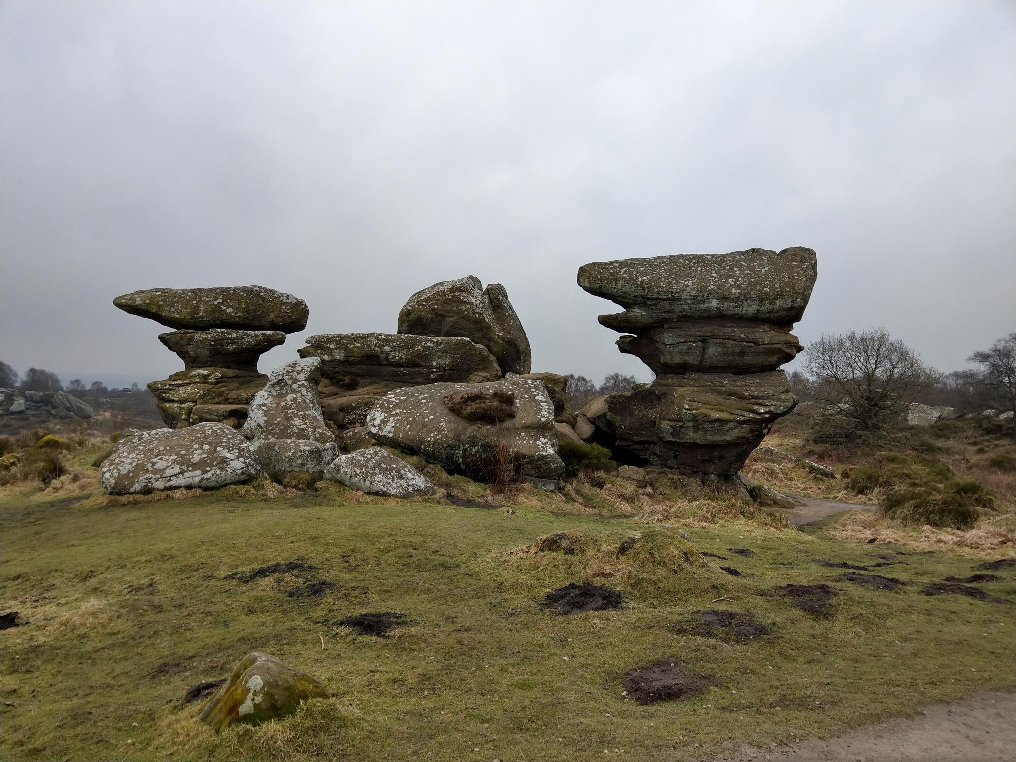 Brimham Rocks by Dave Brown