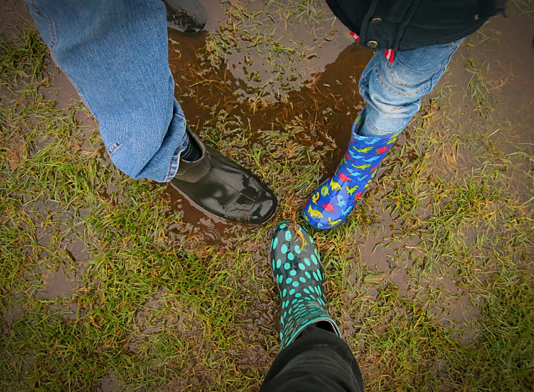 Family Wellies by Yvonne Lewis
