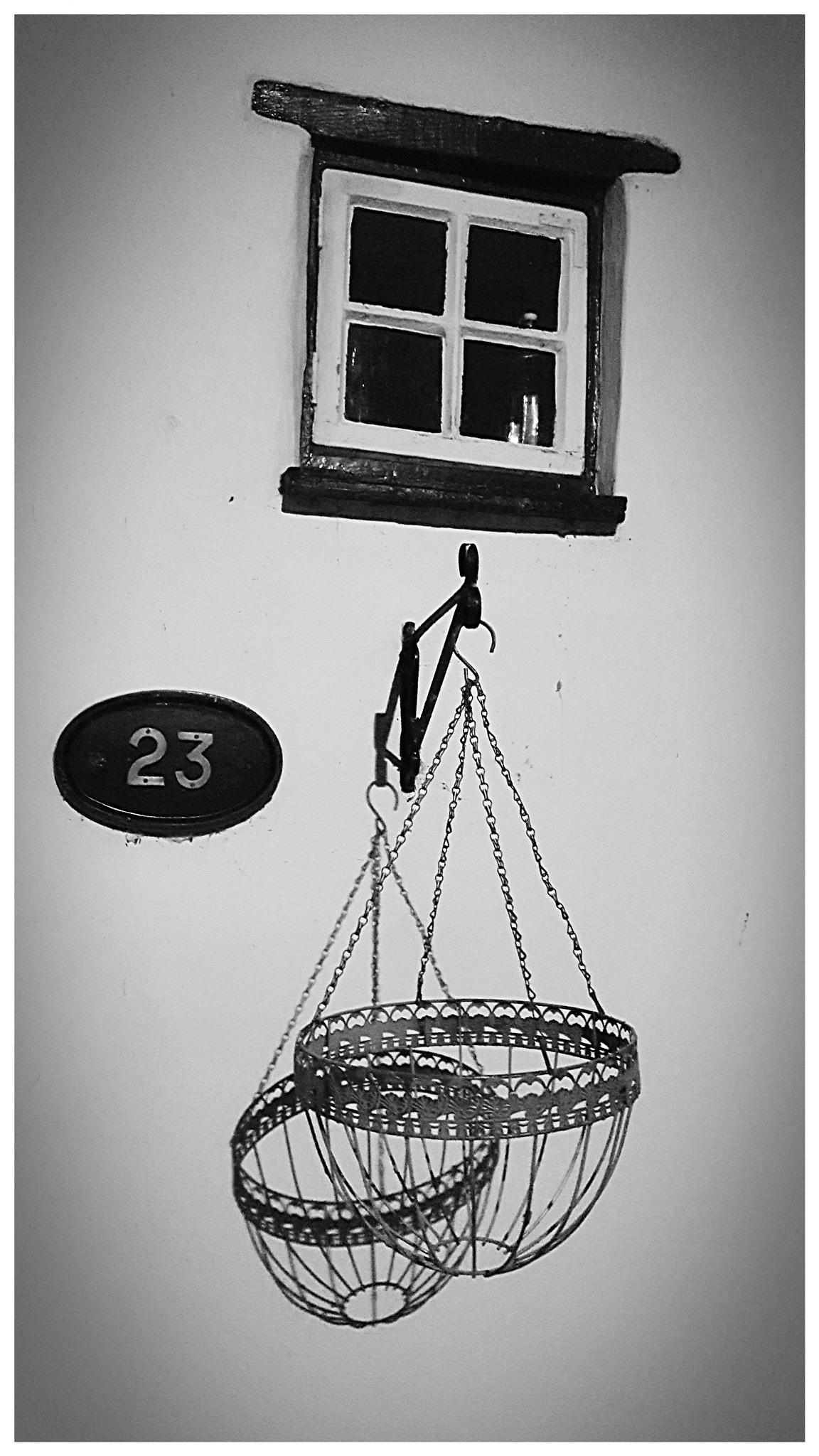 Basket Shadow by Yvonne Lewis