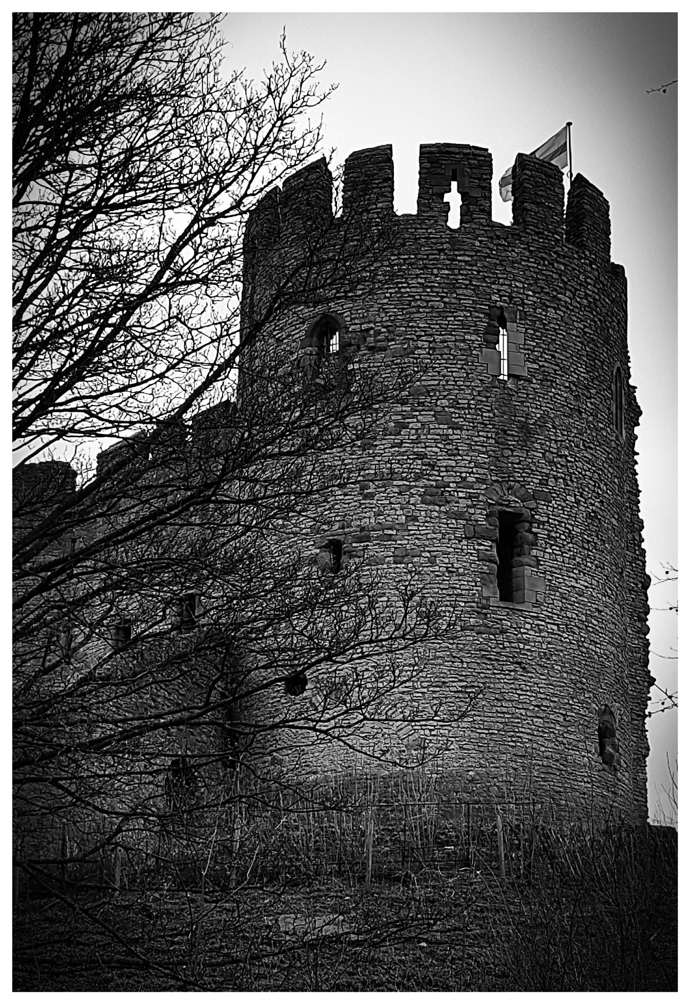 The Castle Dudley Zoo by Yvonne Lewis