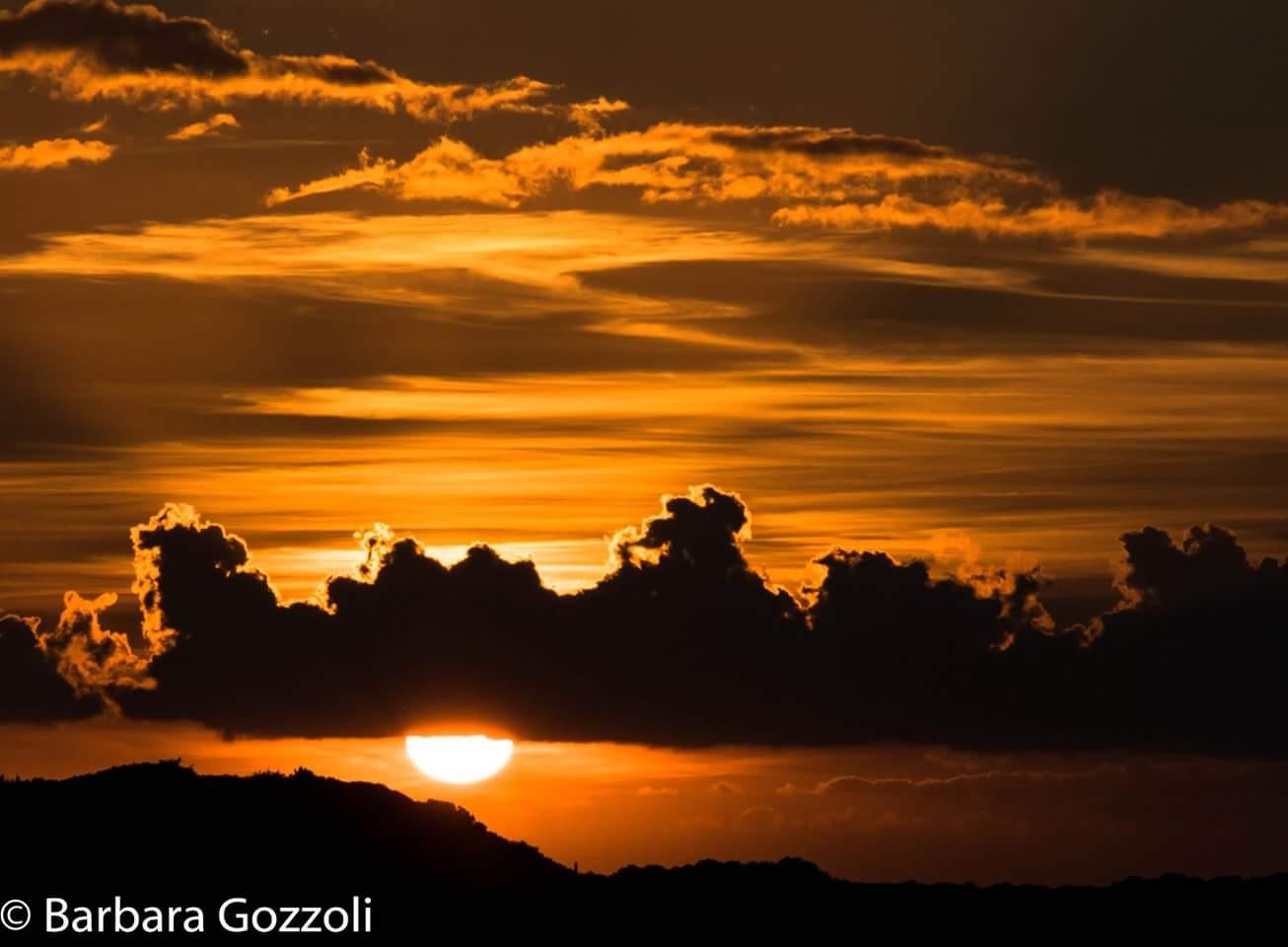 sun by BarbaraGozzoli