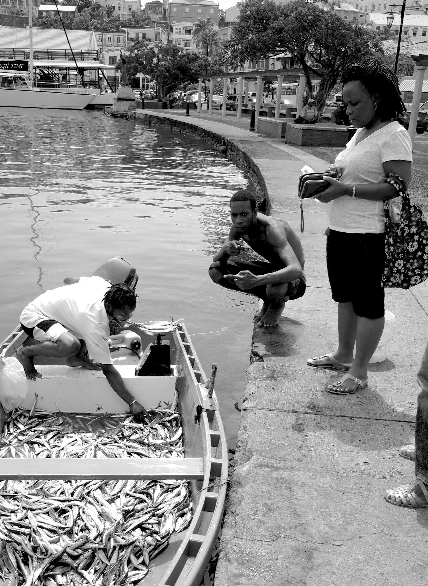 Grenadian fishermen.. by Grant Brooks