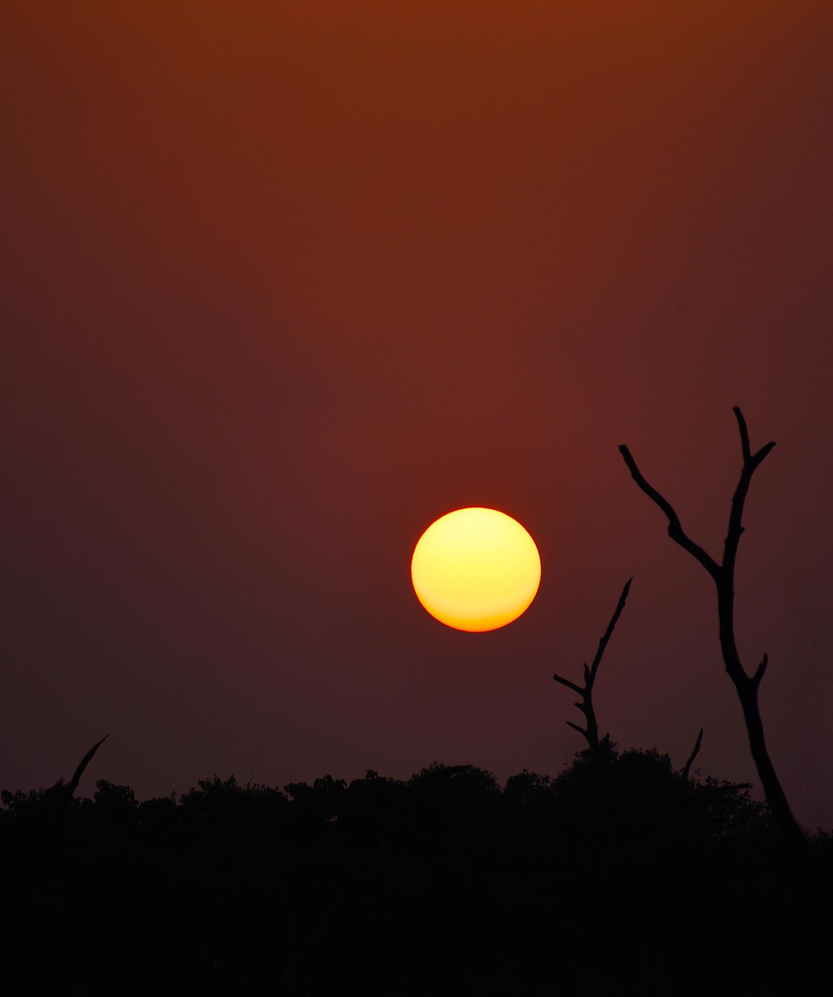 will meet again.. by SapnaAgrawal