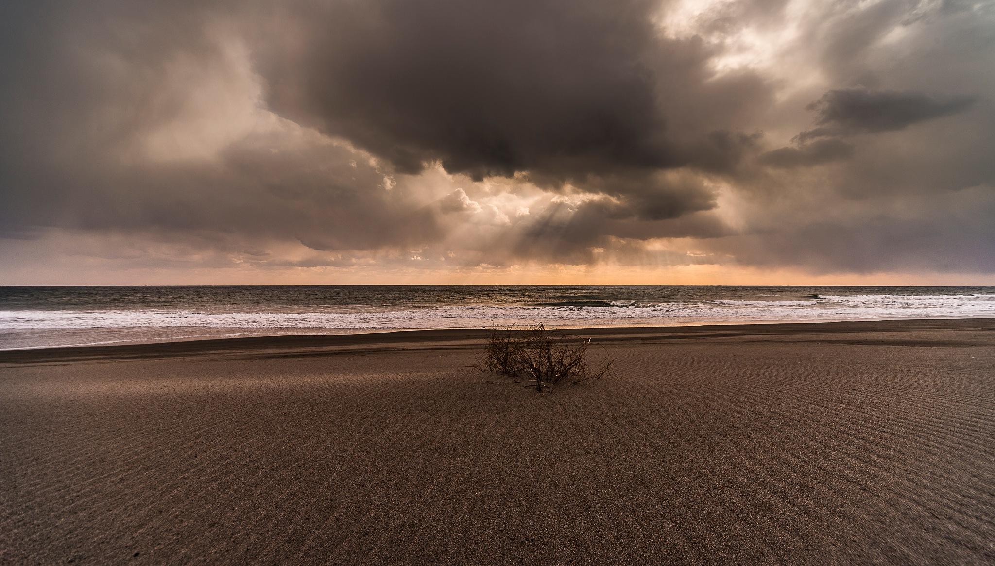 Winter seascape by Shozo kudo