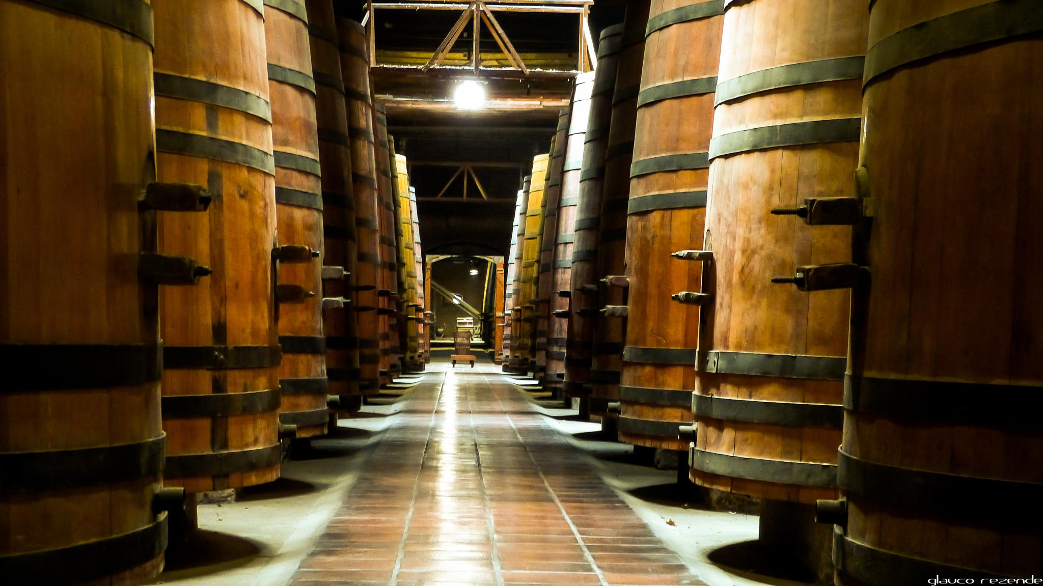 Would you like some wine? by Glauco Rezende
